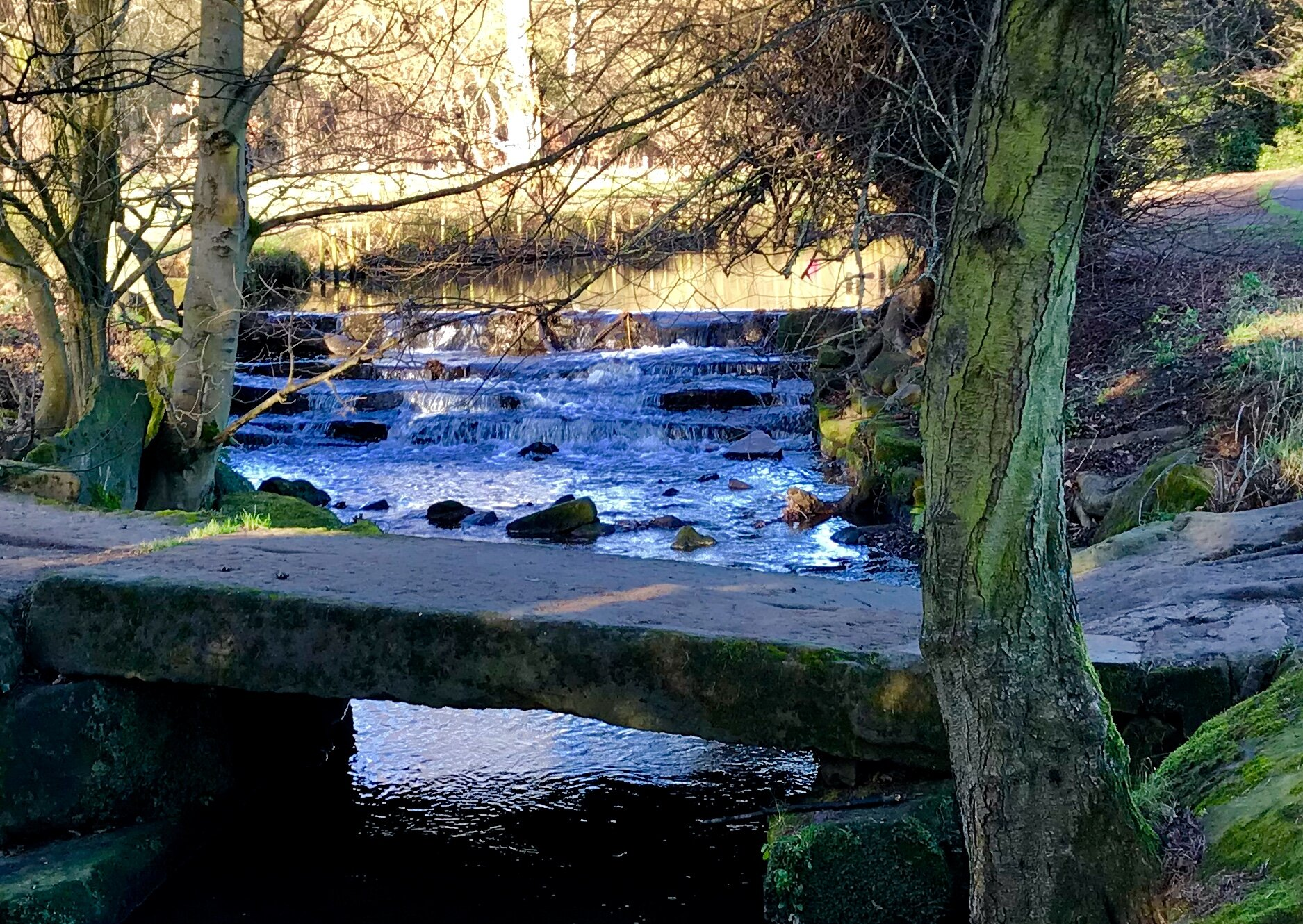 Clapper bridge and weir, Meanwood Beck © HP