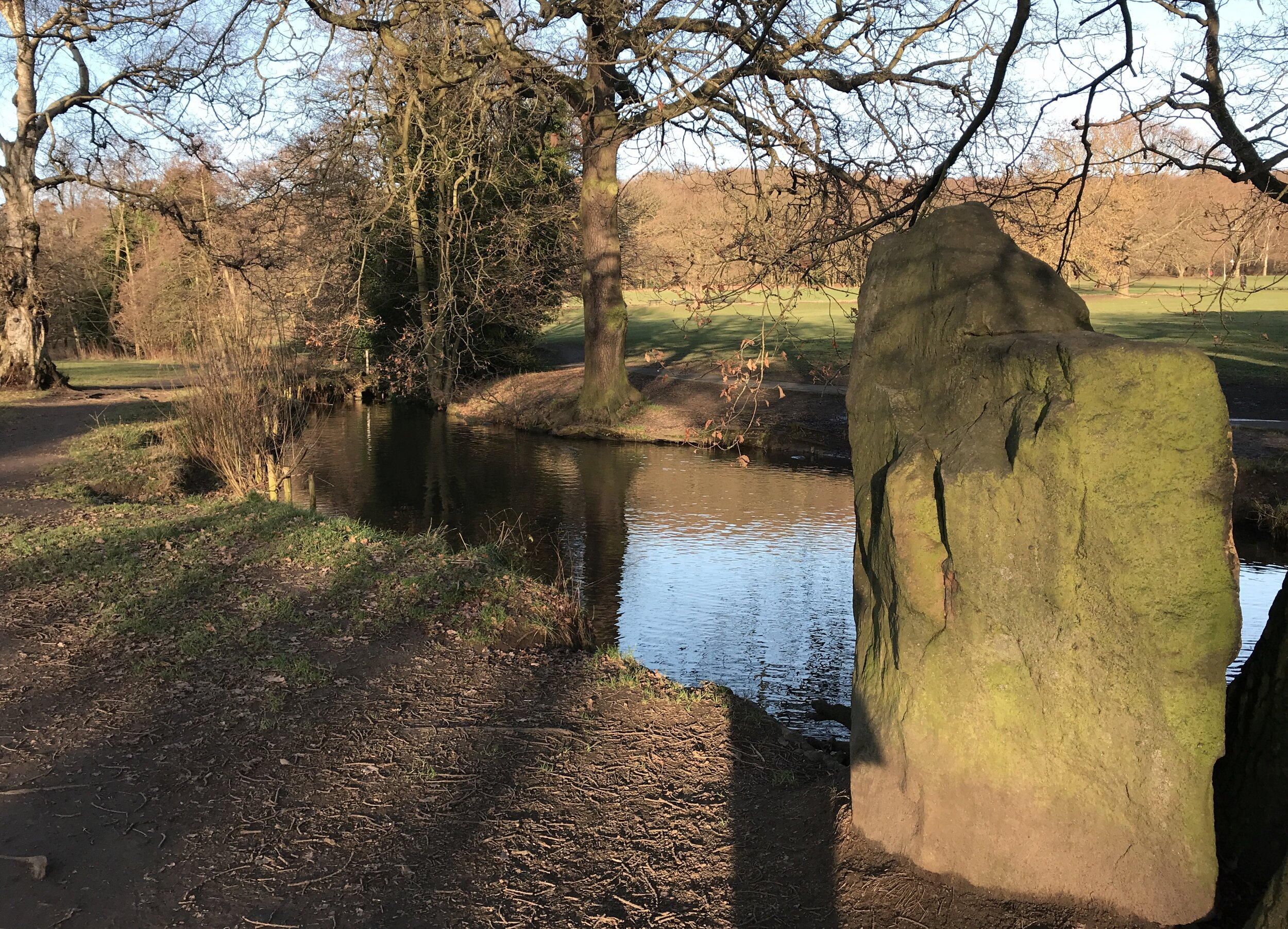 Stone by the Beck, Meanwood Park © HP
