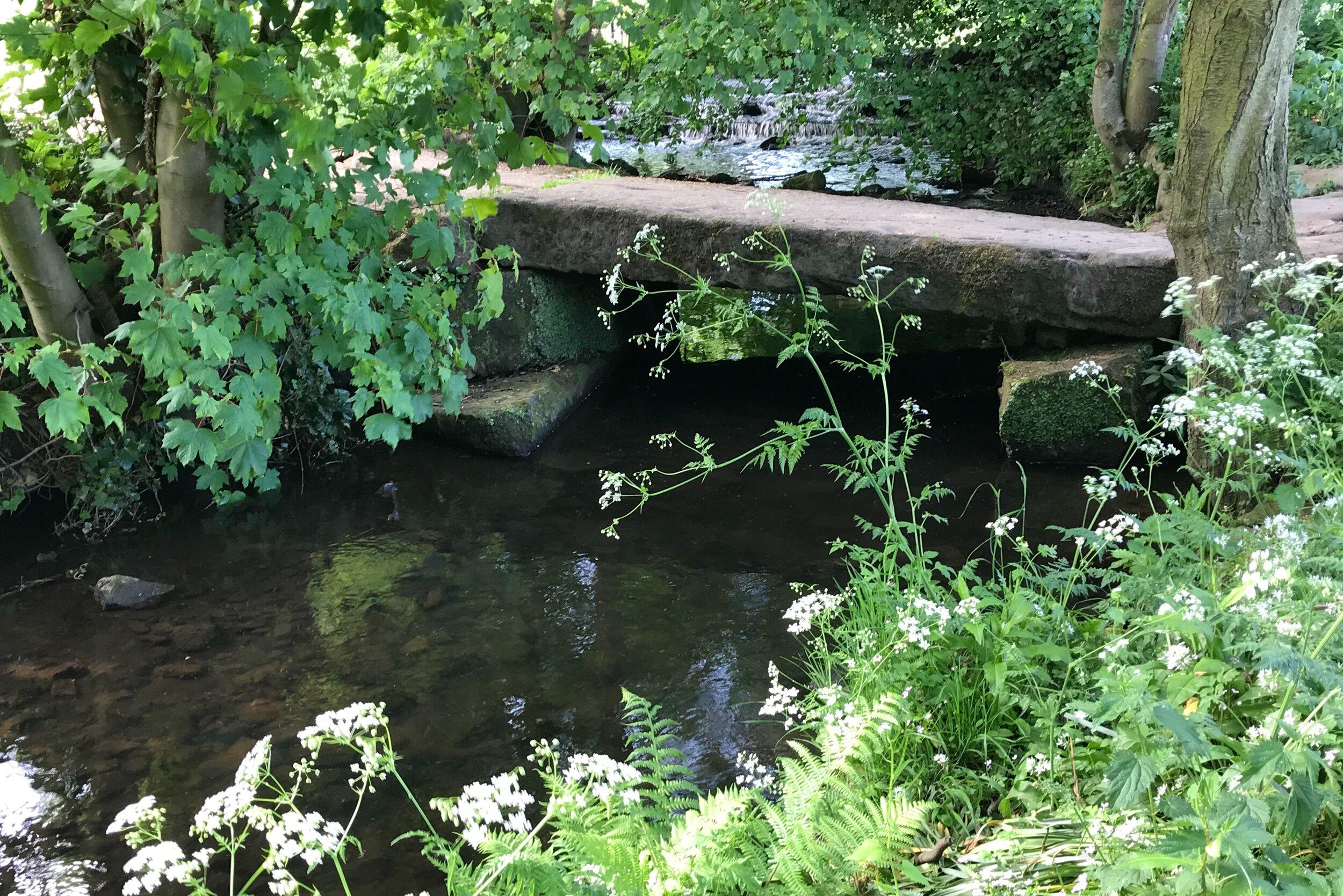 Clapper bridge, Meanwood Beck © HP