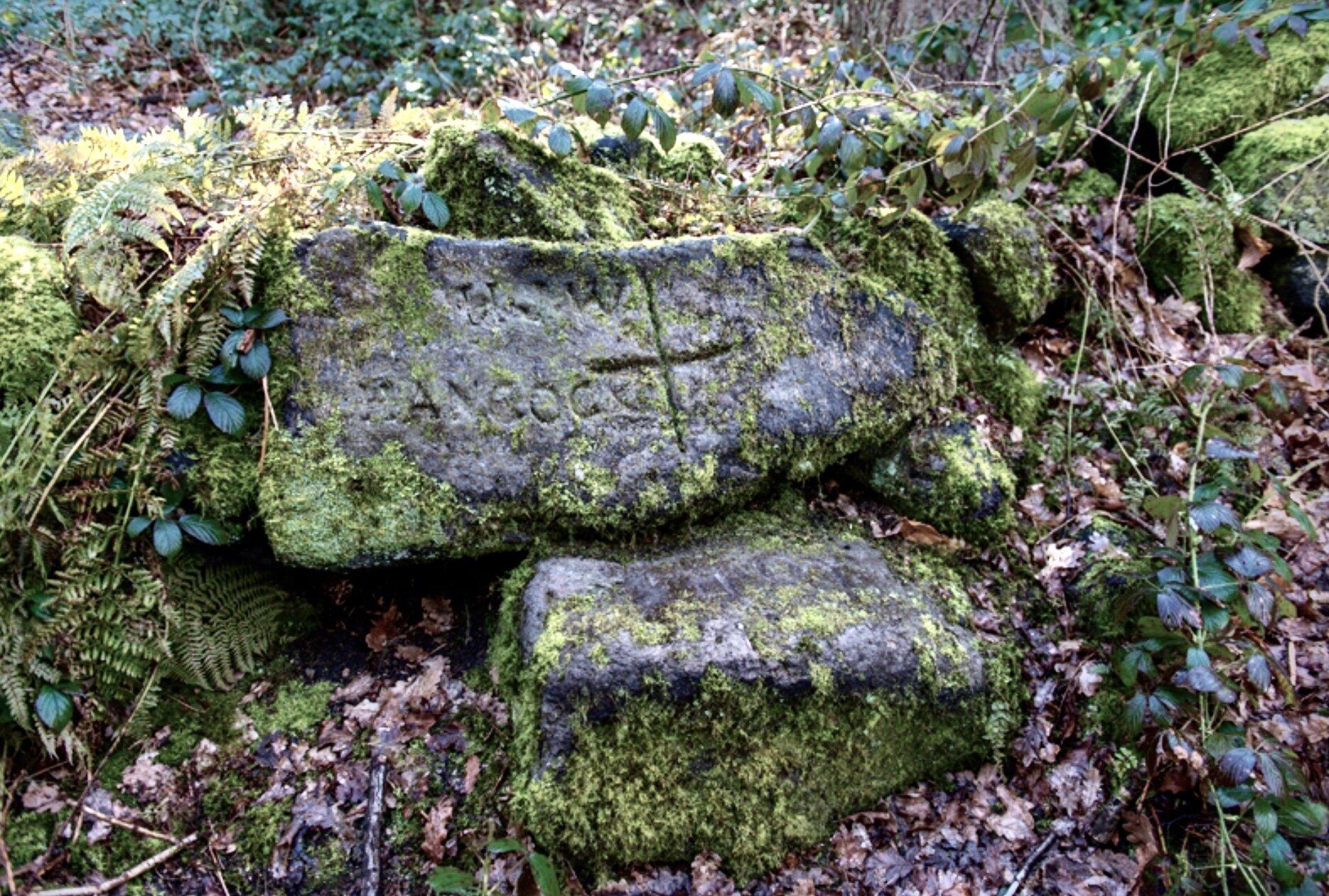 Suicide Stone, Meanwood Park © DW