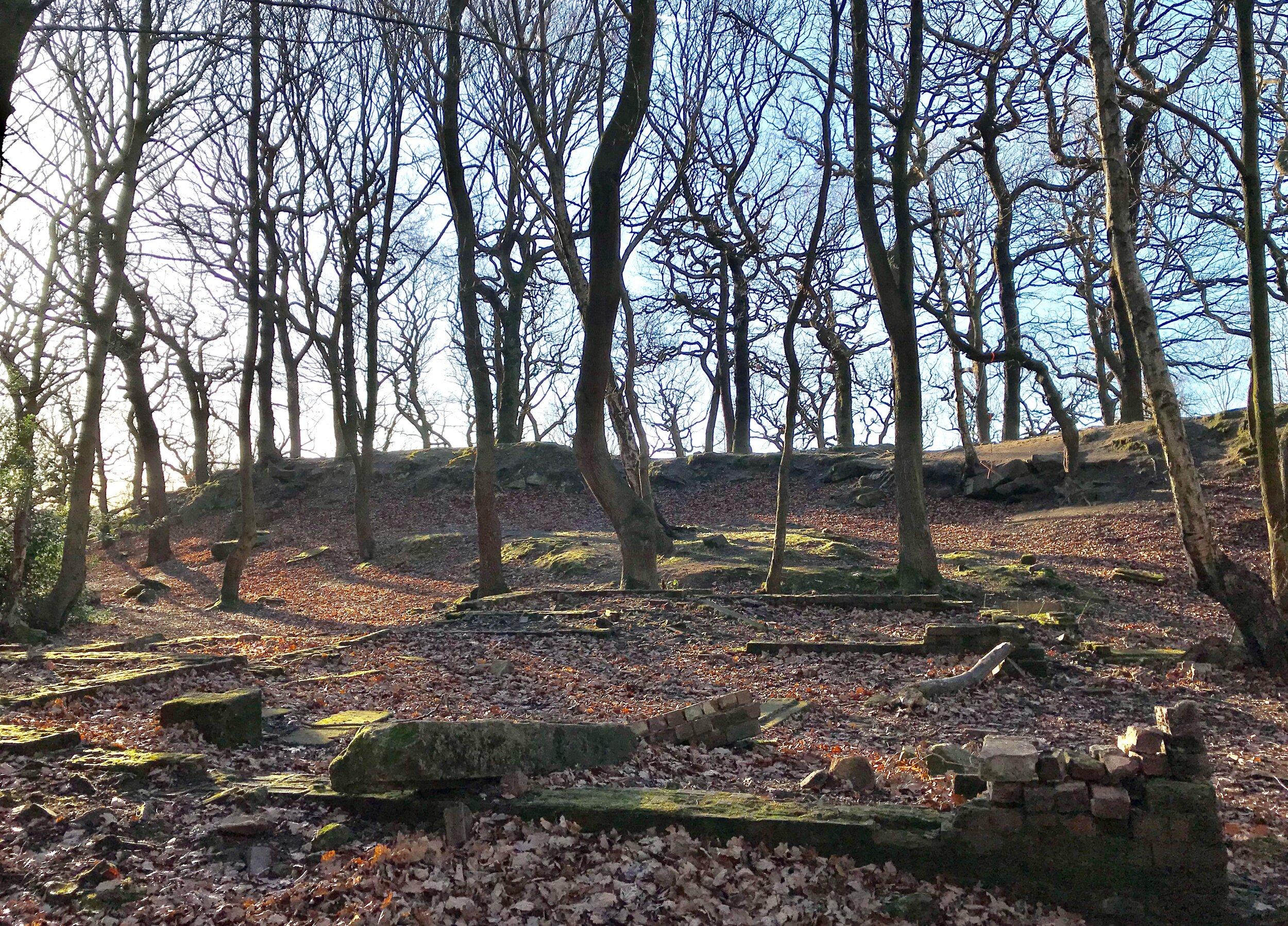 Quarry, Meanwood Park © HP