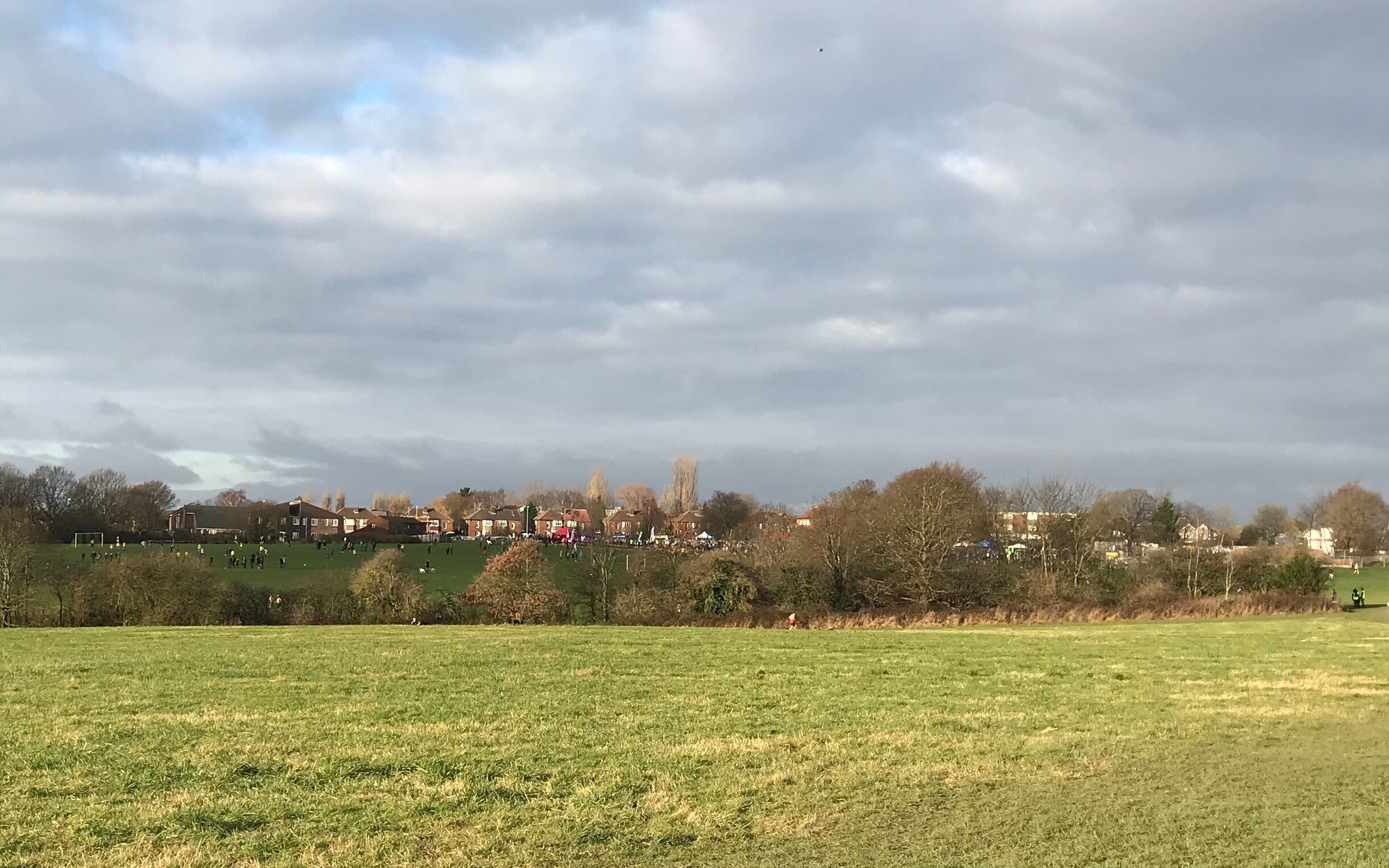 West Park Fields, from Northolme Avenue © HP