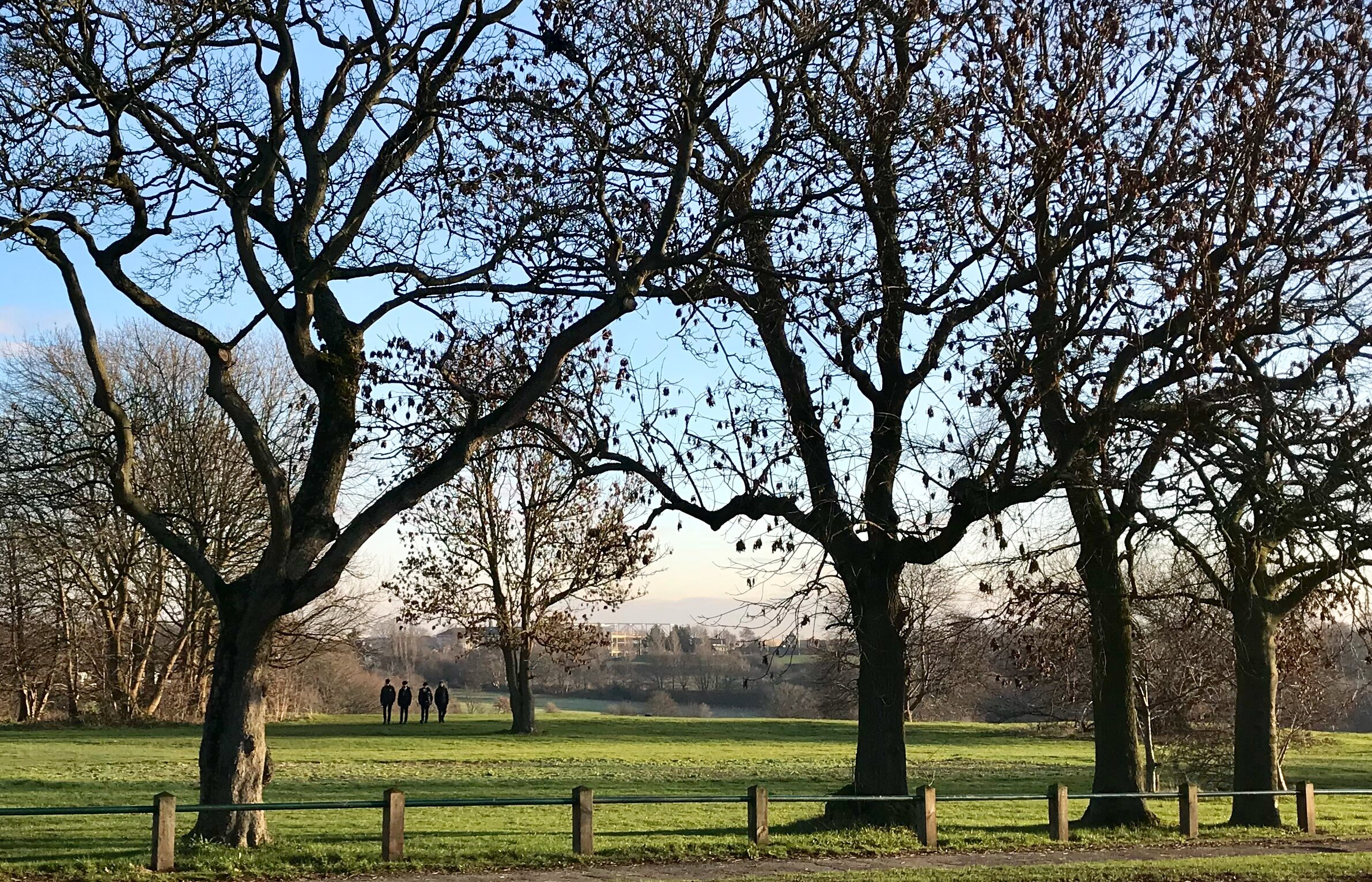 West Park Fields, from Butcher Hill © HP
