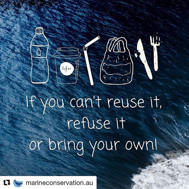 #Repost @marineconservation.au (@get_repost) ・・・ June 8 is #WorldOceansDay - just a reminder that everyone can do something small throughout their day to #beatplasticpollution and save our oceans 💙  #ditchtheplastic #plasticfree #BeTheChange #deepbluelife #BeyondPlastic #FFSLDN #protectwhatyoulove #awaveofchange #stopsucking #jointheresistance #plasticfreecoastline #switchthestick #plastic #conservation #turningthetides #plasticoceanfestival #plasticoceans #watertrek #plasticpollutes #plasticpollution #foamfree #moreoceanlessplastic #saveourseas #saveouroceans