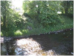 Current-river.jpg