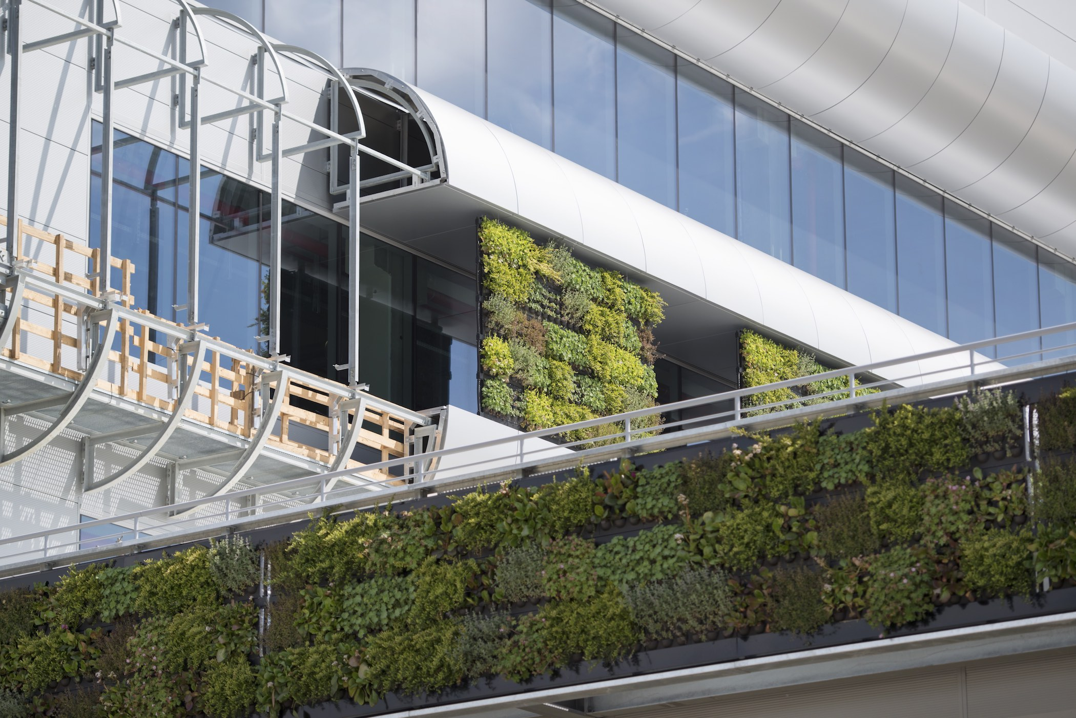 Exterior Living Wall on Nike's European Logistics Campus in Laakdal, Belgium