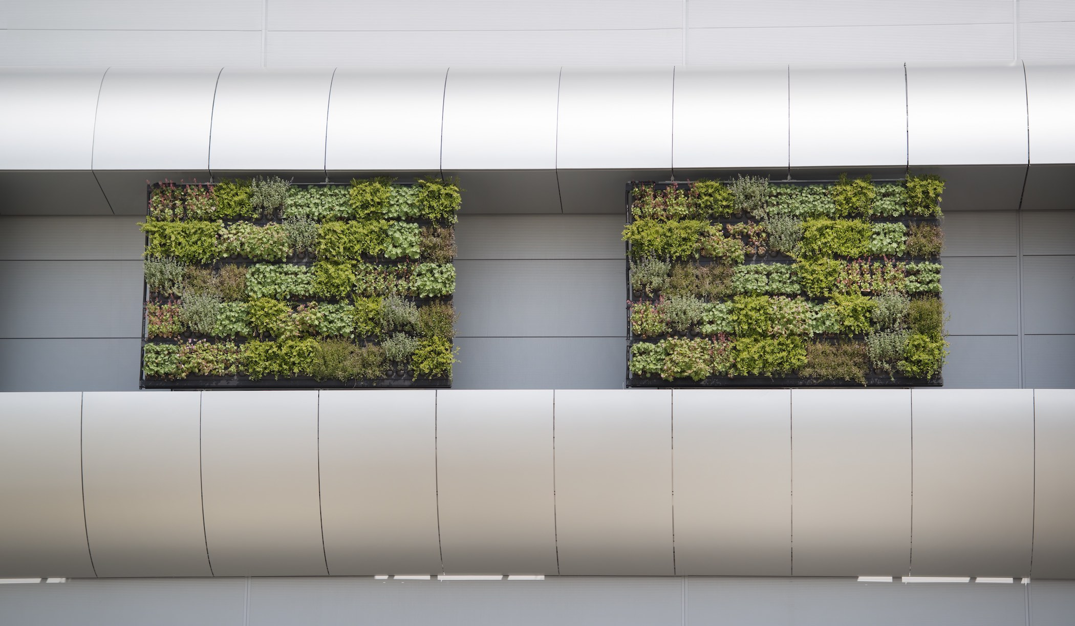 Outdoor green wall system - Nike