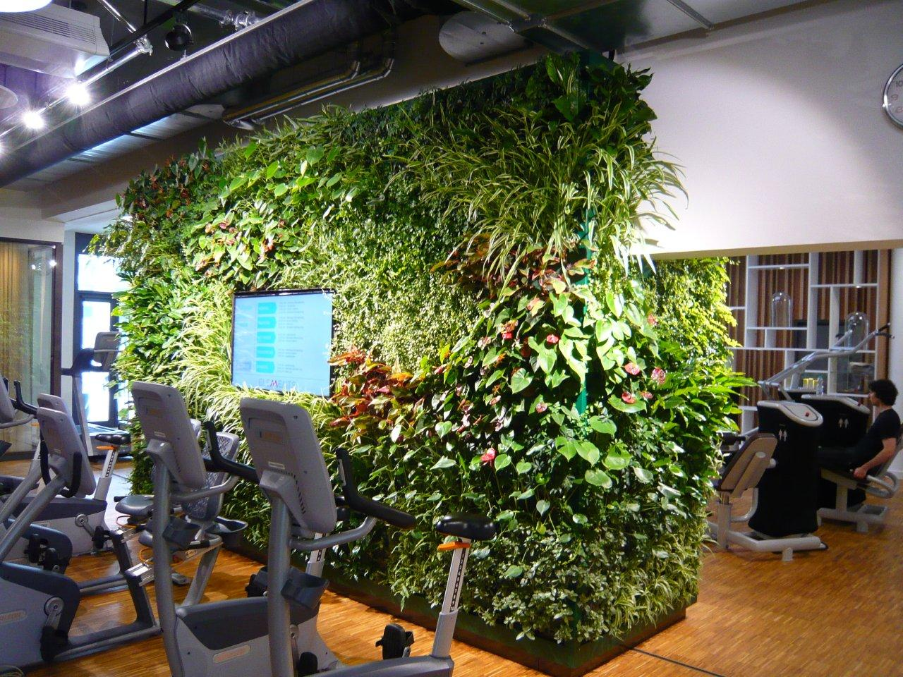 Beautiful Garden Wall by Suite Plants at a Fitness Center in Nürnberg, Germany