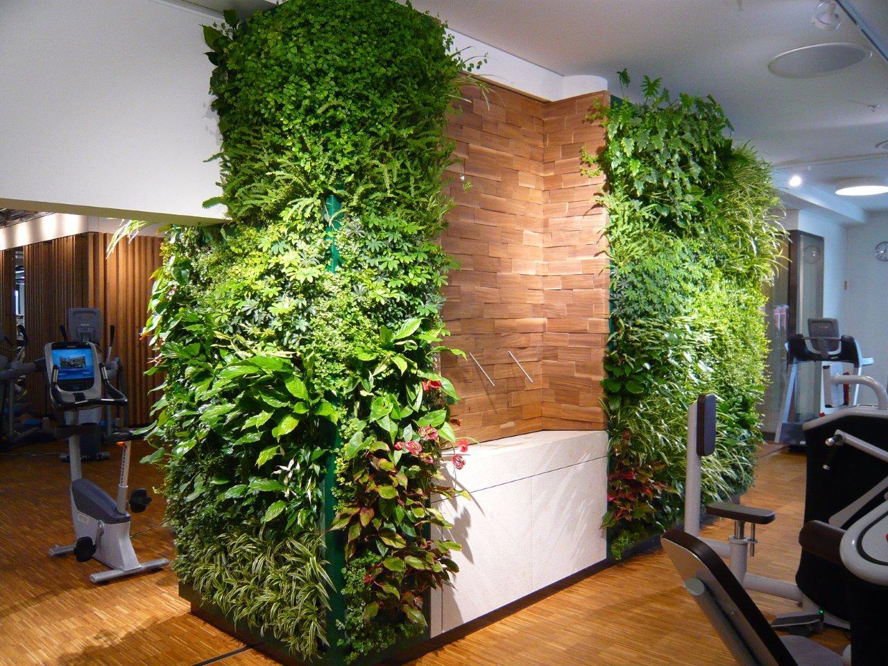 Modern health club interior design - Plant Wall