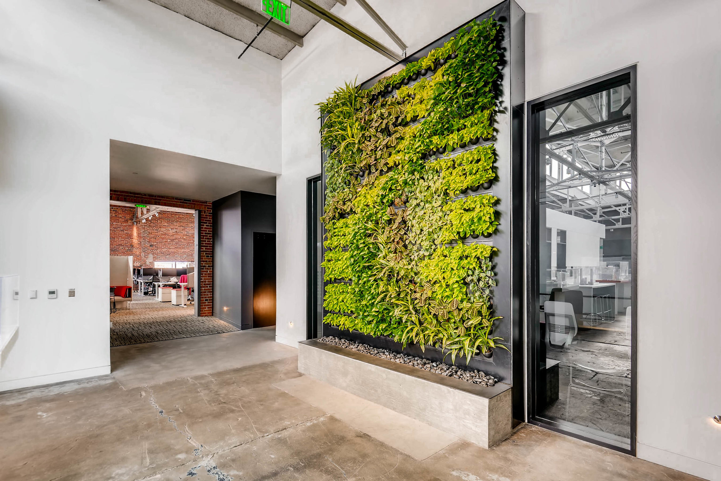 Living Wall Art in Architecture Firm - Denver, Colorado