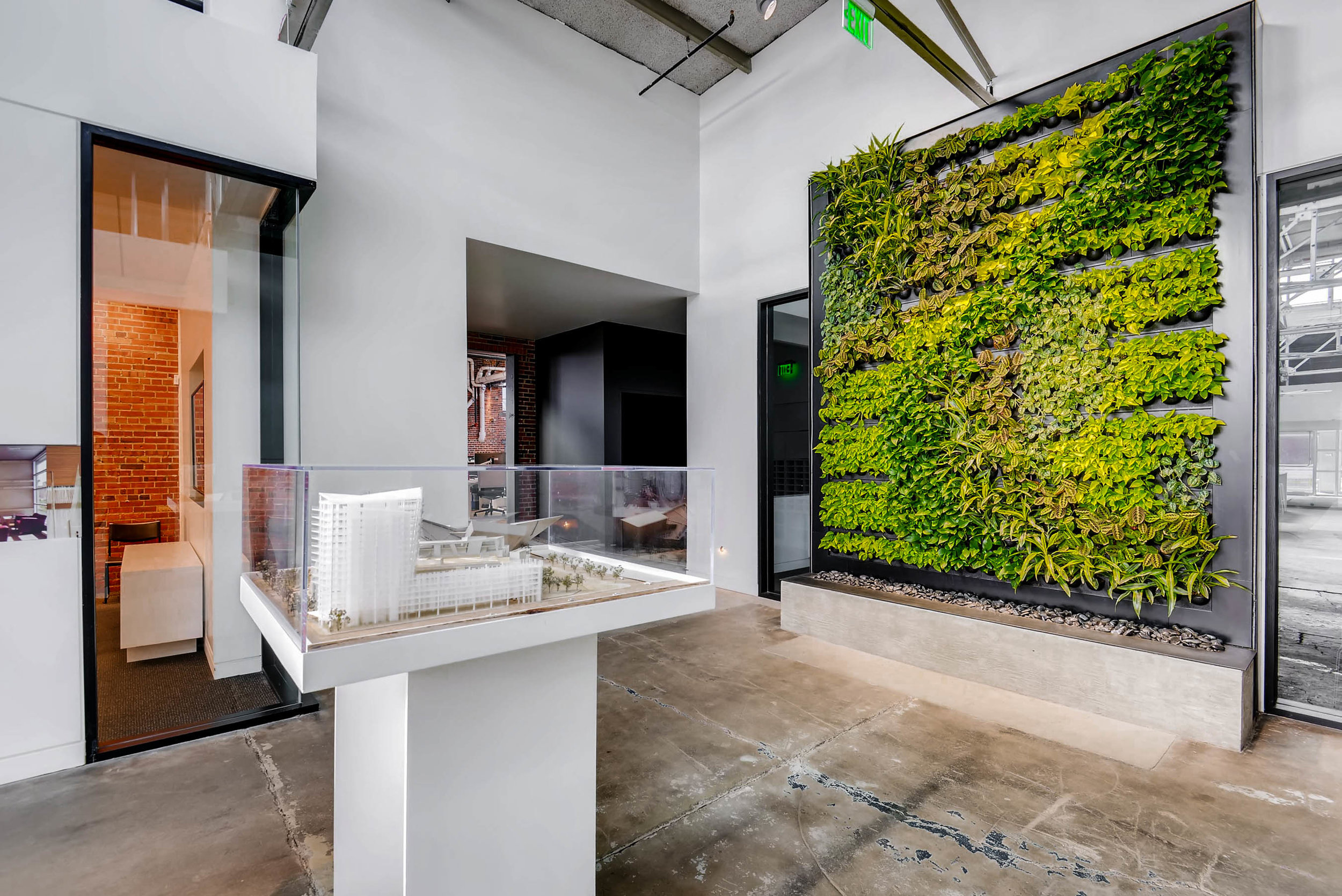 Indoor Plant Design by Suite Plants