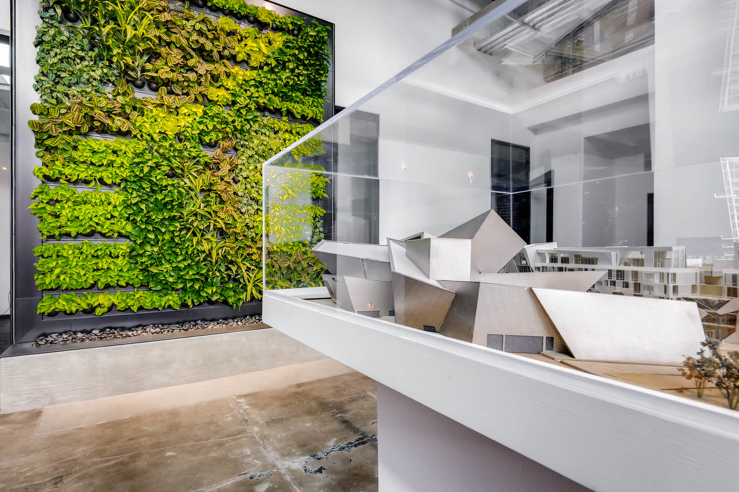 Plants in Modern Architecture - Denver, Colorado