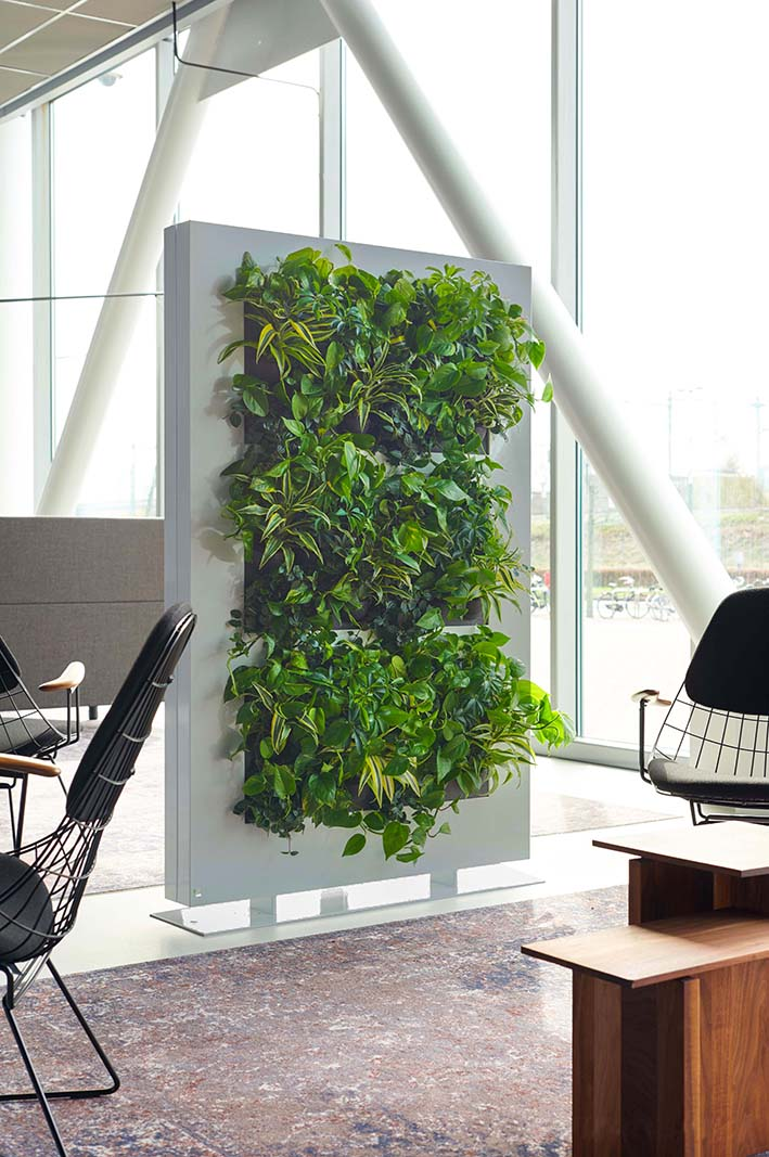 Indoor wall planter 6' h x 4 'w