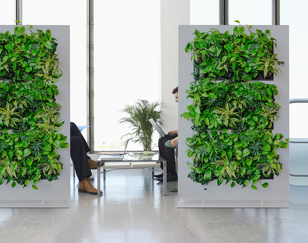 Room divider with live plants