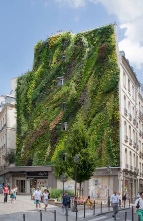 Patric Blank Rue D'Abokour living wall