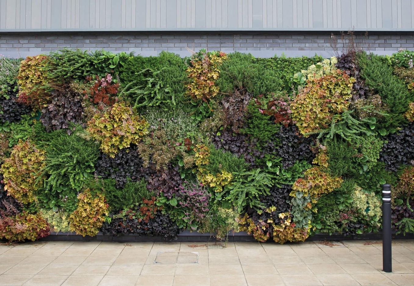 LivePanel  LivePanel is a custom plant wall system for all indoor and outdoor spaces.