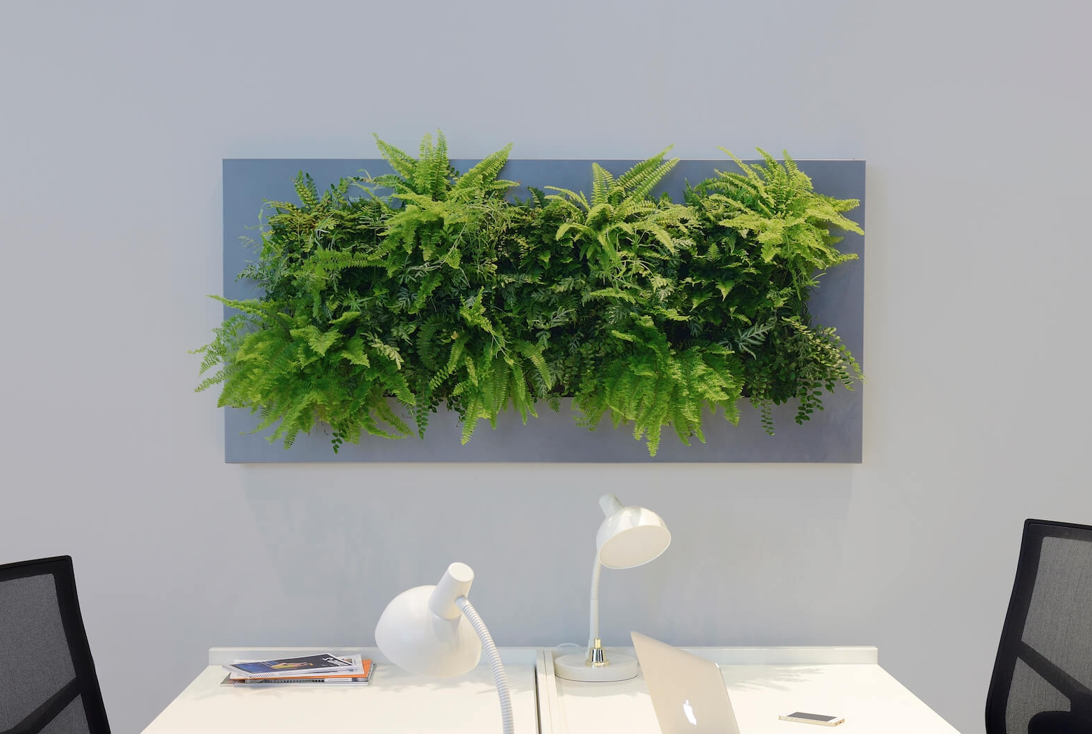 LivePicture  LivePicture is a piece of living artwork that bridges the gap between plants and art and comes in five different sizes.