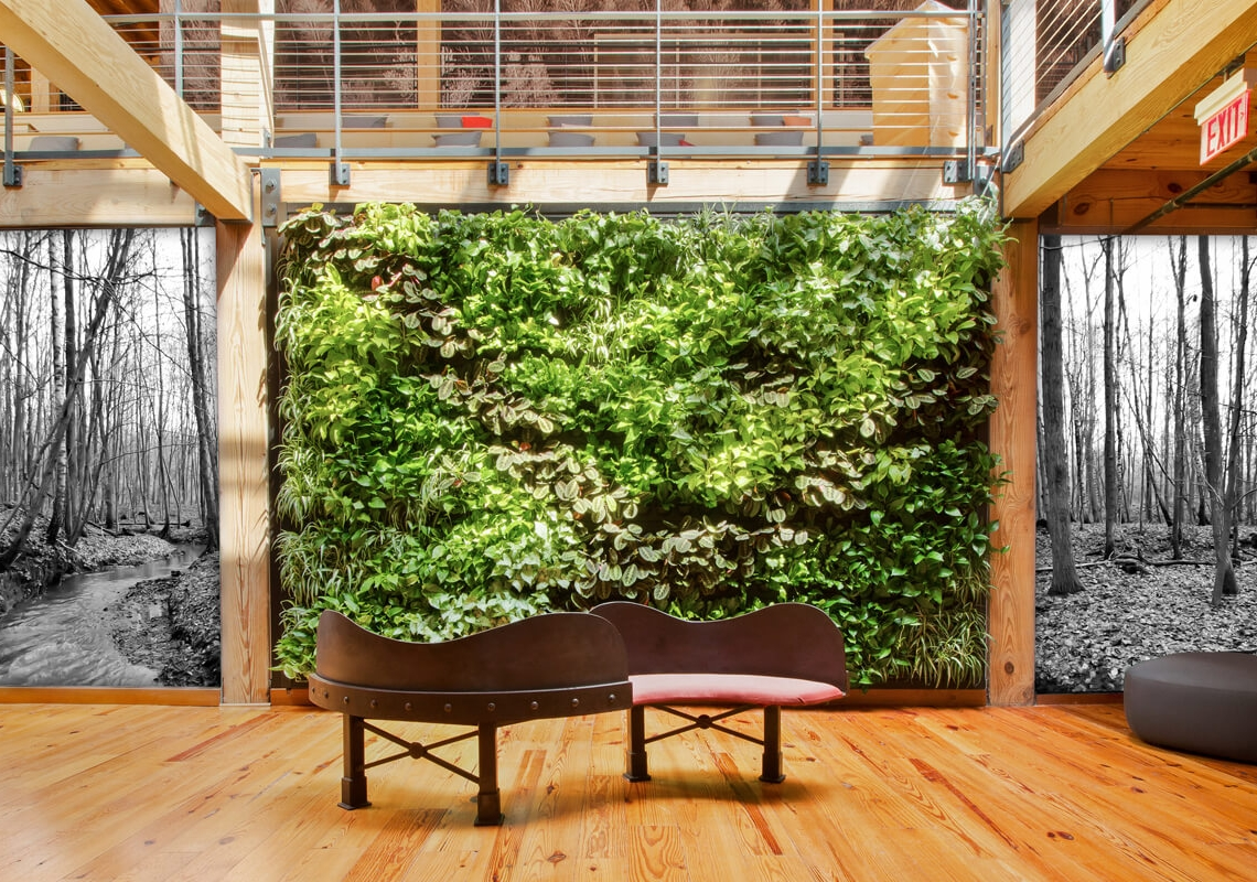 Indoor green wall system by Suite Plants in Durham, North Carolina
