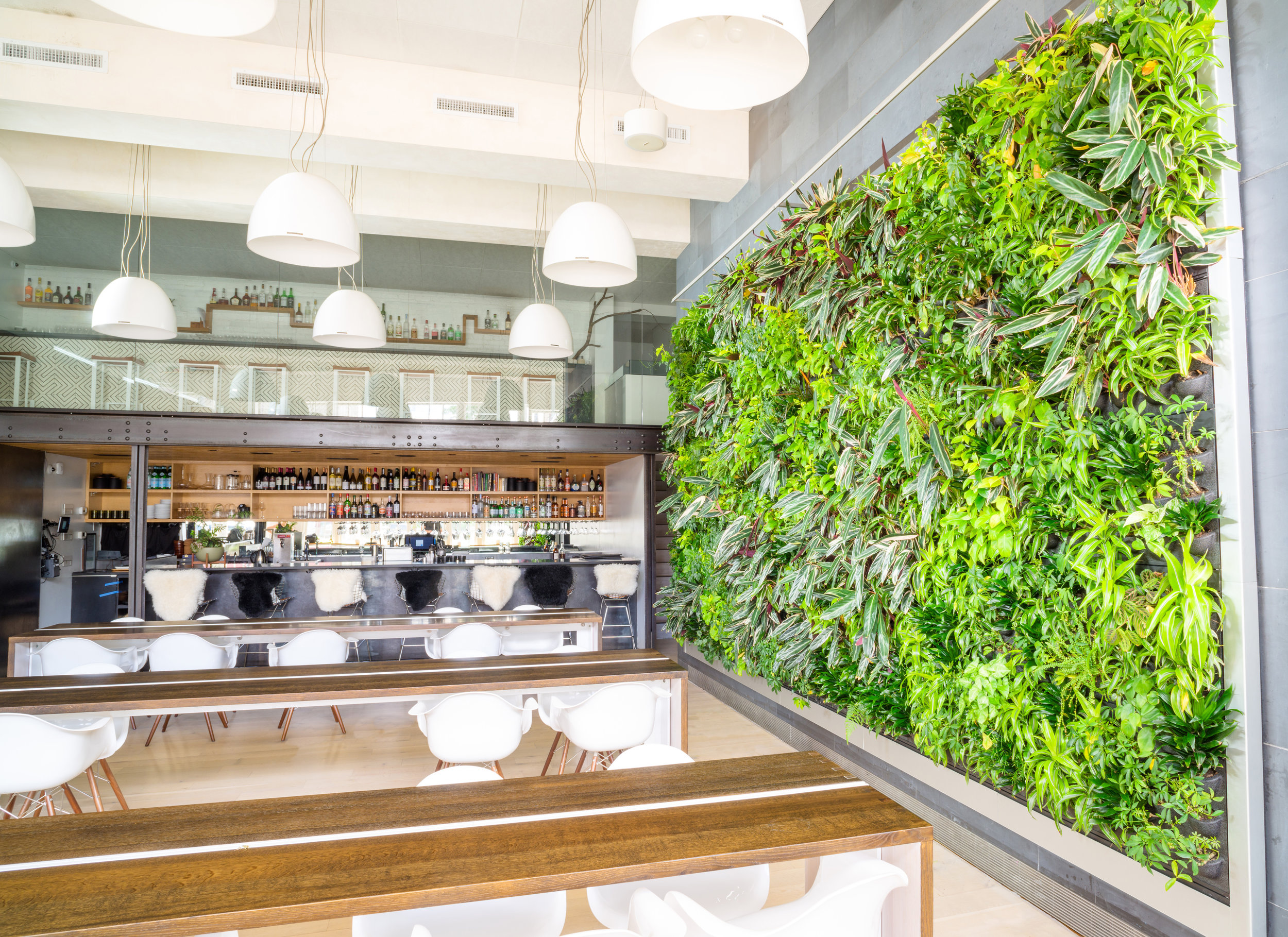 Fish Nor Fowl restaurant in Pittsburgh, PA - Live Panel by Suite Plants