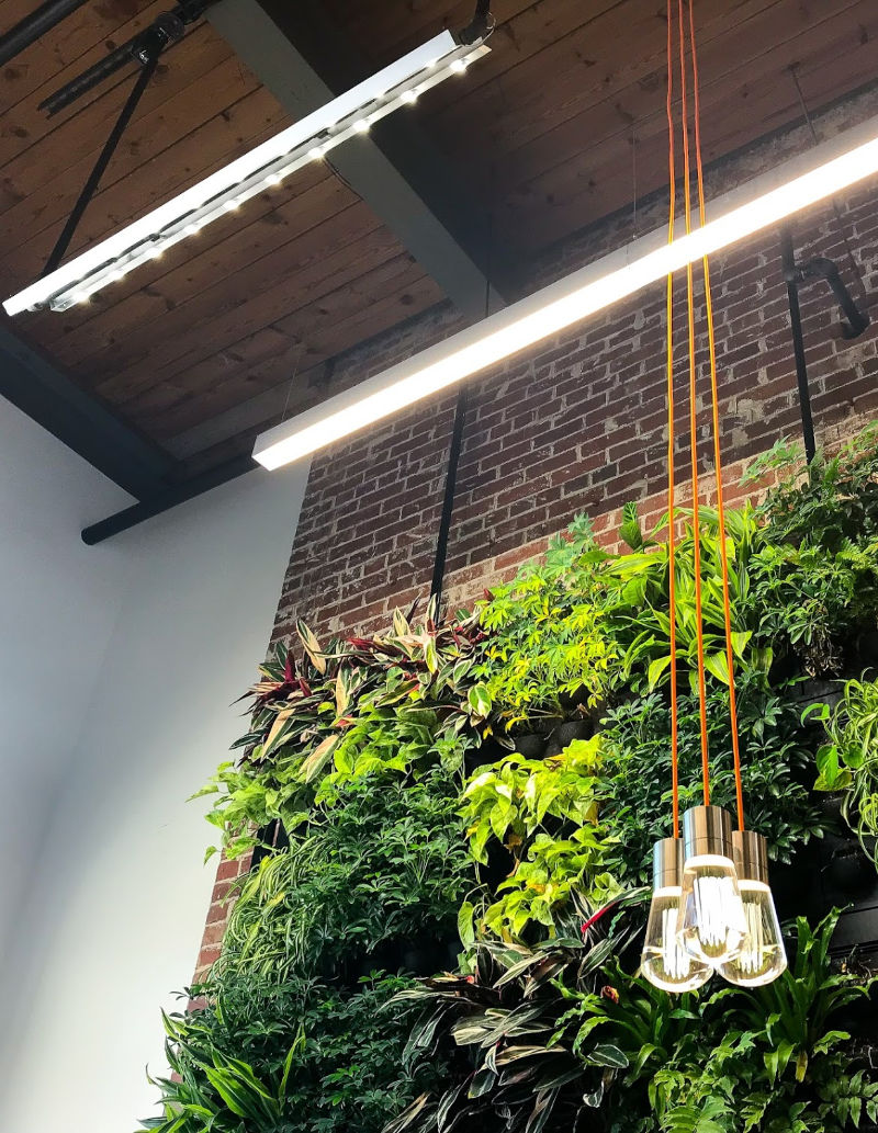 Living wall with linear LEDs: The Launch Factory in Charlotte, NC