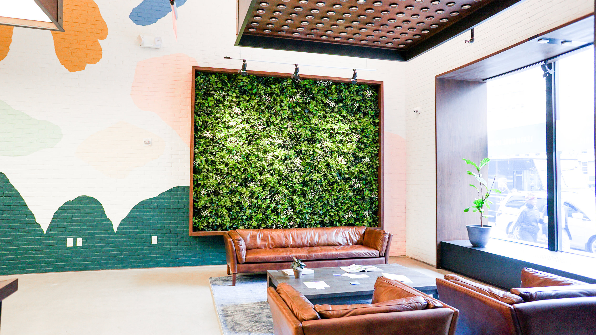 ALW in Lobby at Columbia Care, Brooklyn, NY  The lack of adequate lighting in the lobby of this natural wellness brand was not conducive to a live plant wall installation, but our Leafy artificial living wall panels worked perfectly.