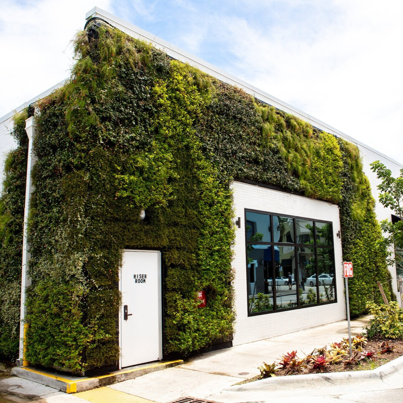 Capital One Café - Exterior Living Wall by Suite Plants