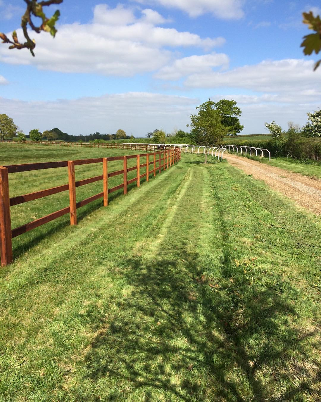 path and fence.JPG