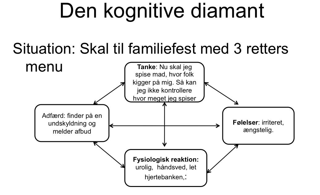 Kilde: Psykologerne;  Tina Holm Nyland  og  Allan Blaabjerg