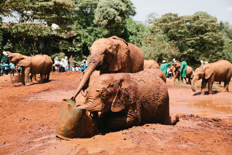 Nairobi_3O2A2537.JPG