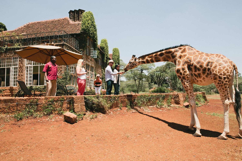 Nairobi_3O2A2621.JPG