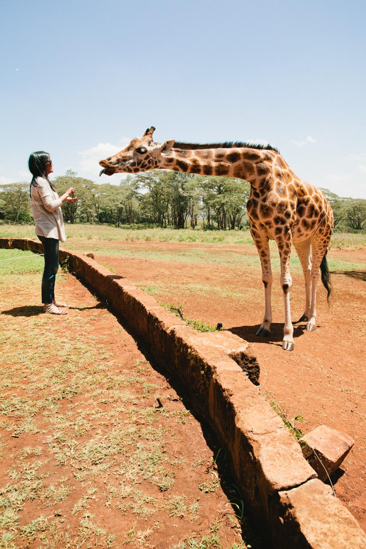 Nairobi_3O2A2645.JPG
