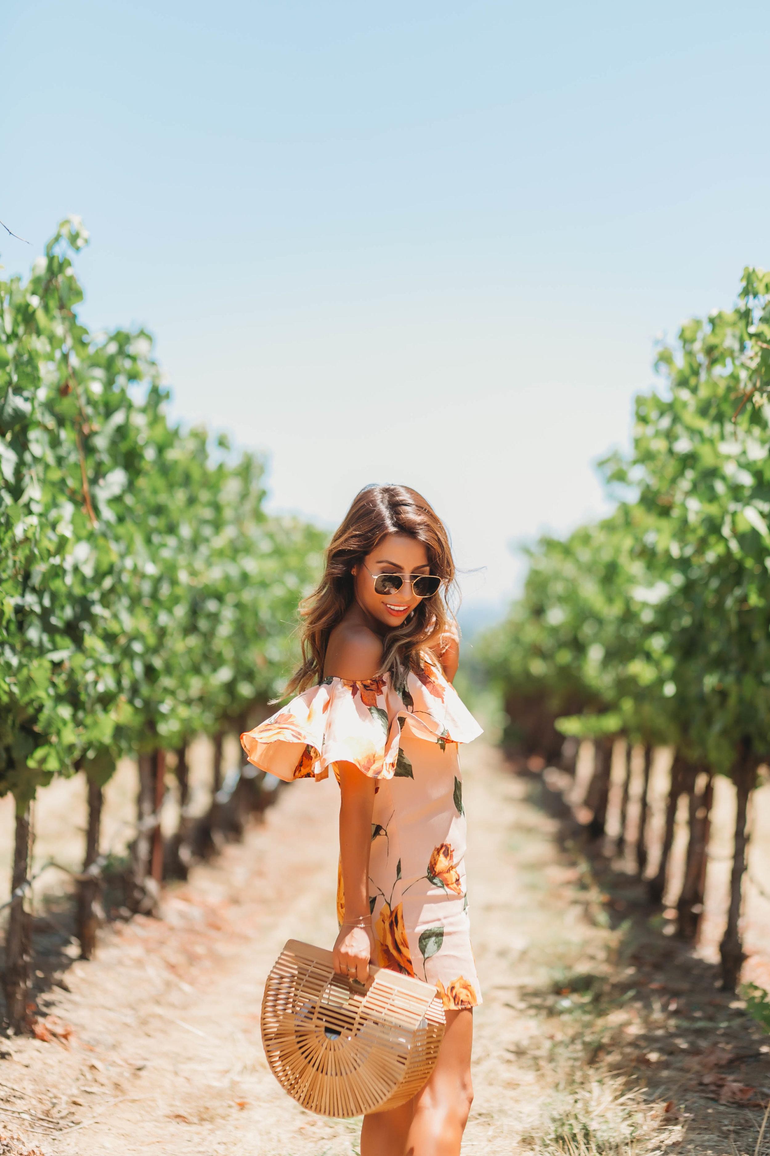 Everyday Pursuits Wine Tasting in Sonoma, Cult Gaia Bag, Stylist LA dress