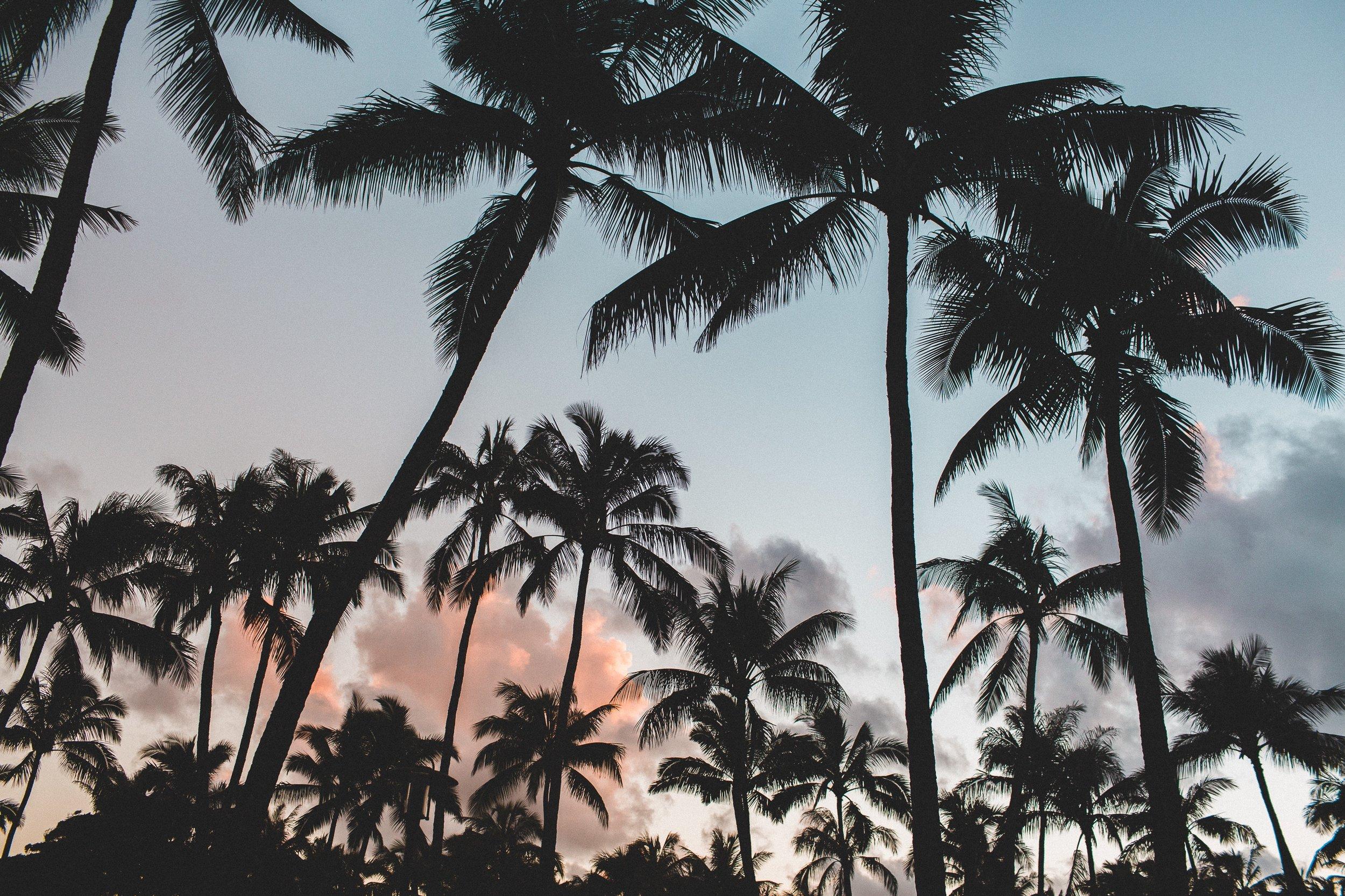 Destination Wedding: Where To Start -