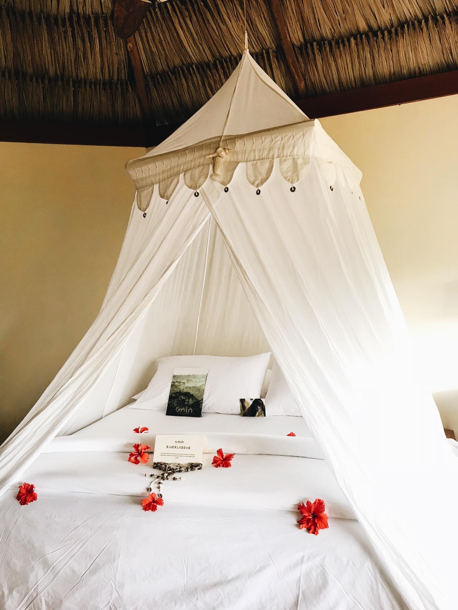 GAIA Riverlodge Honeymoon Package, Belize