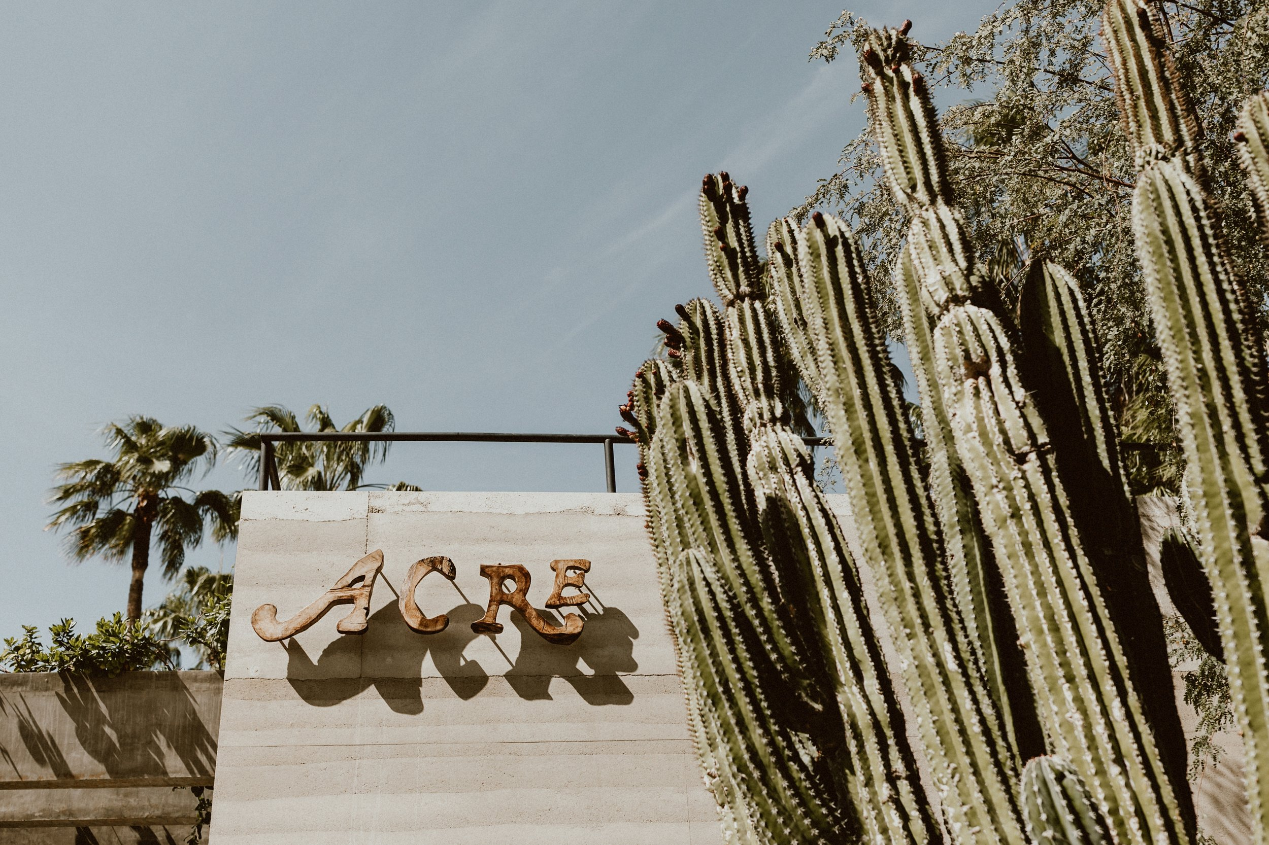Planning a Wedding at ACRE Baja -