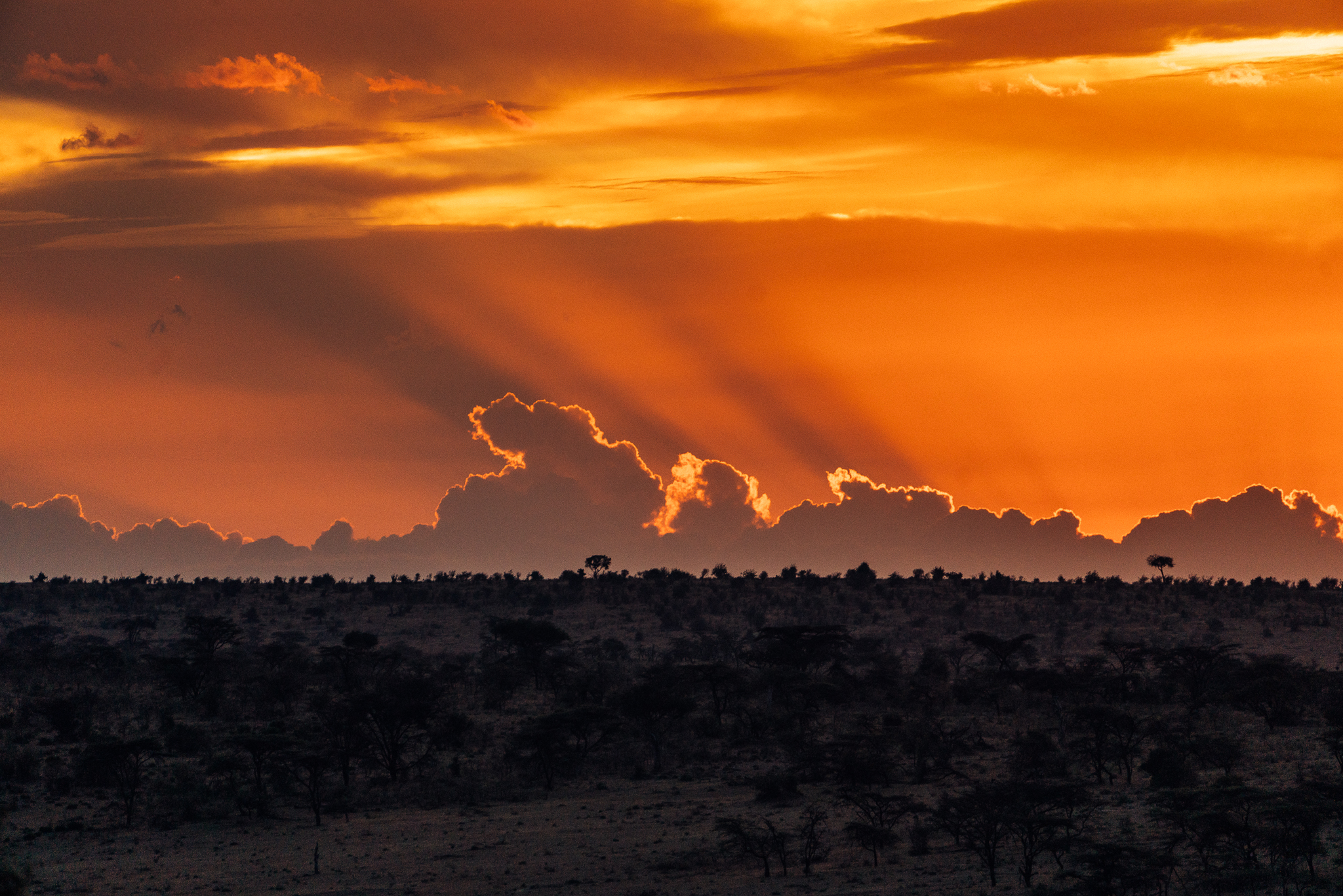 Maasai Mara Sunset - Kenya, Africa | Ph by Dave Krugman