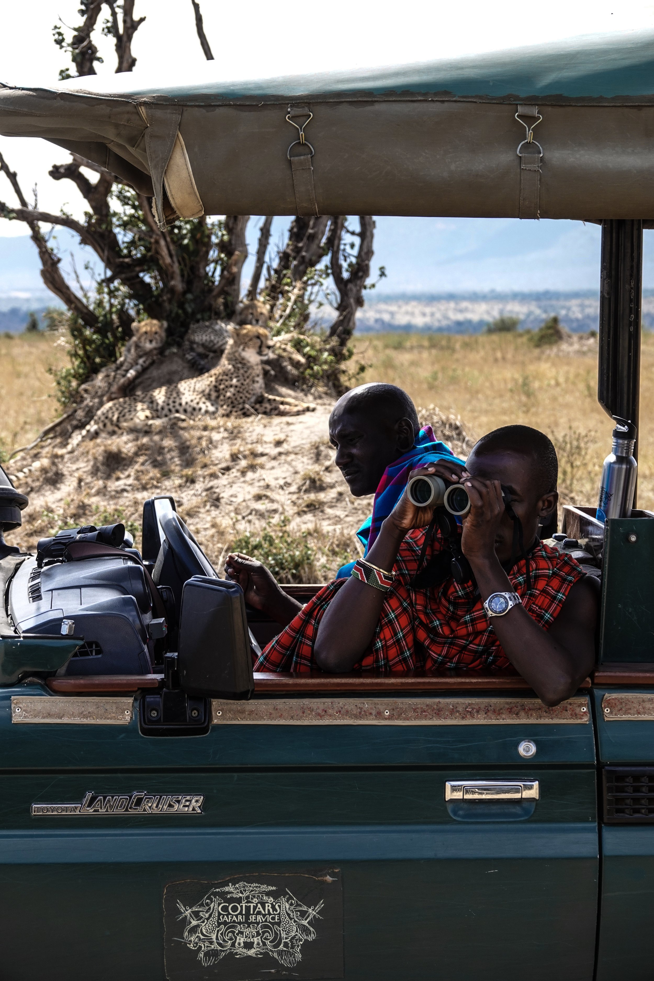 Cheetah Spotting - Maasai Mara Kenya Safar Ph. Ashley Torres