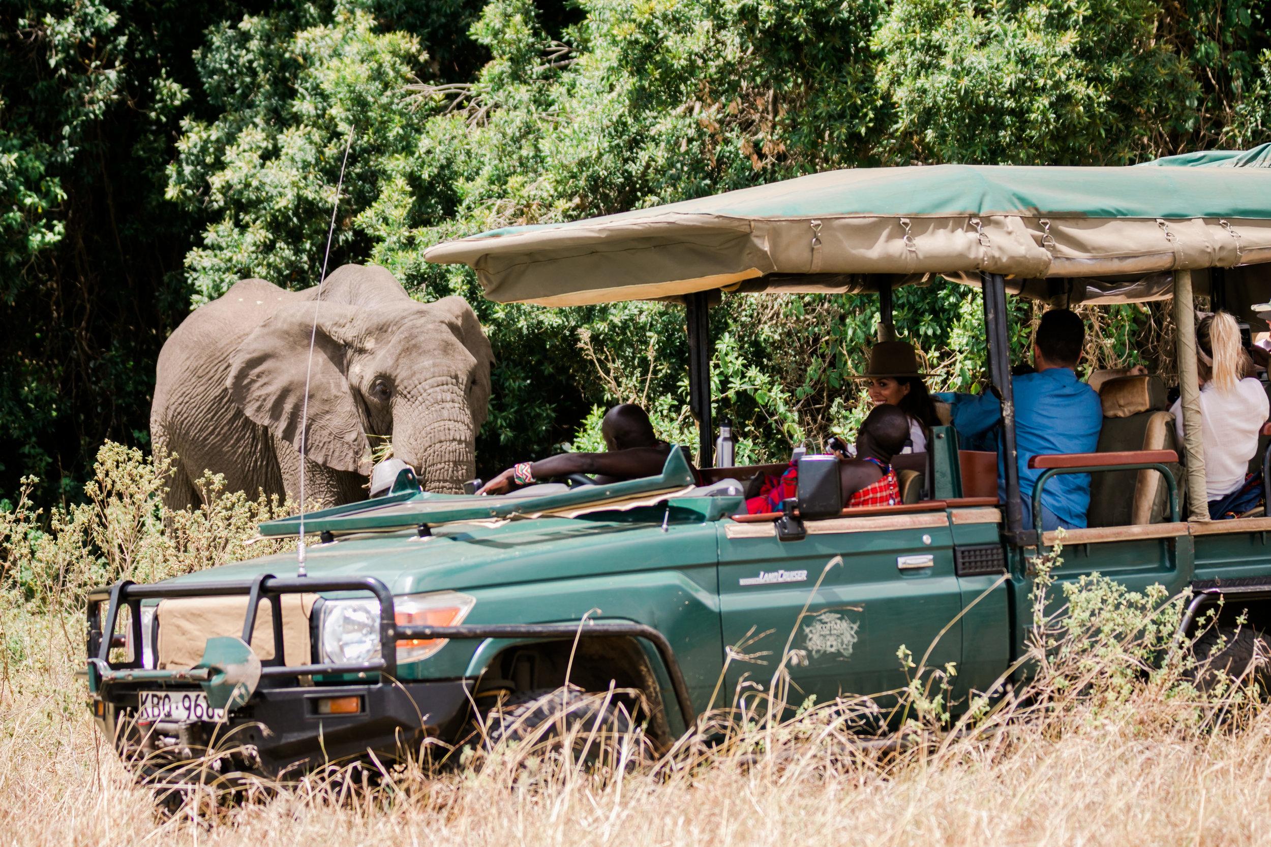 Elephant Spotting - Cottars Kenya Safari Ph. Valorie Darling