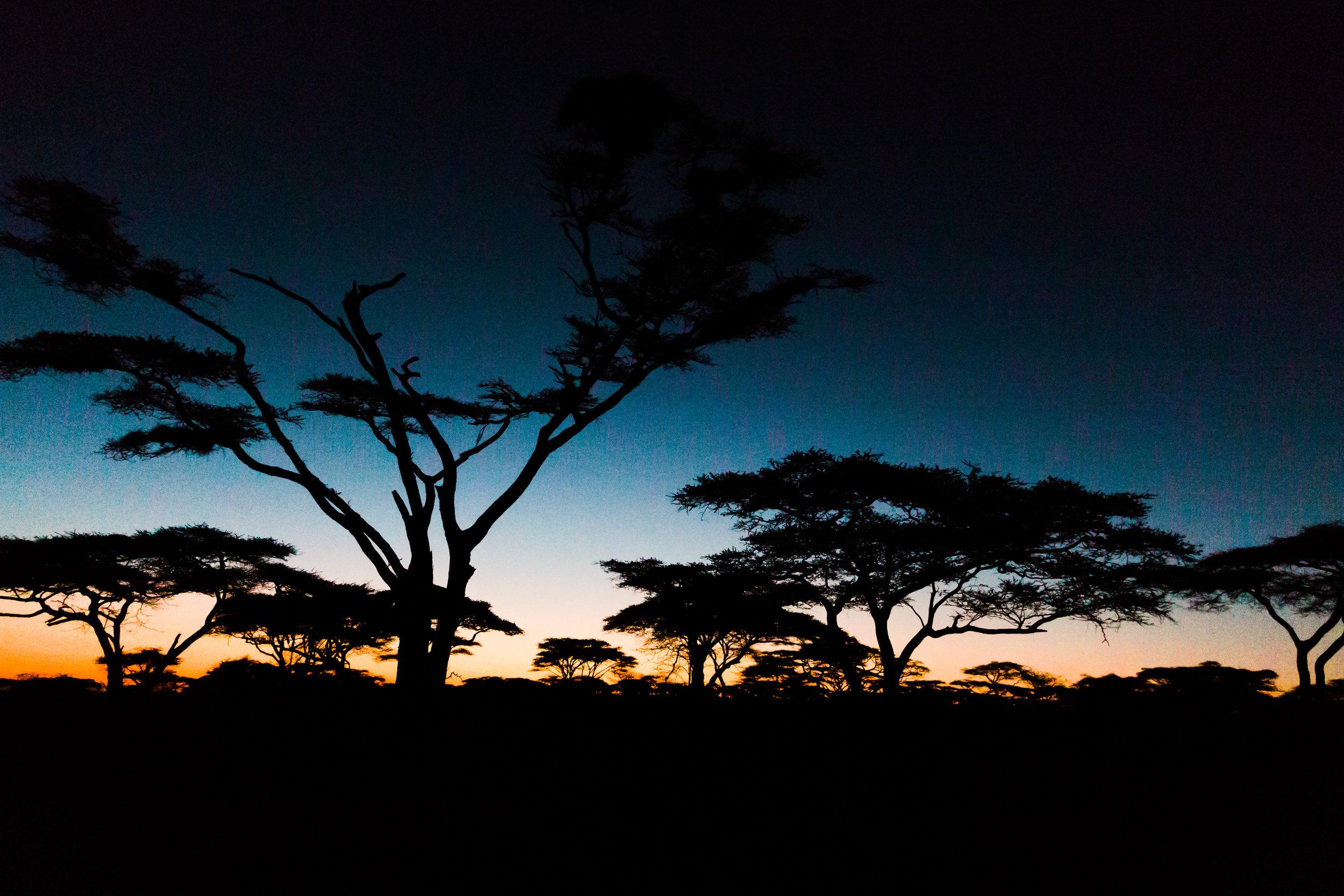 Maasai Mara Sunset Ph. Valorie Darling
