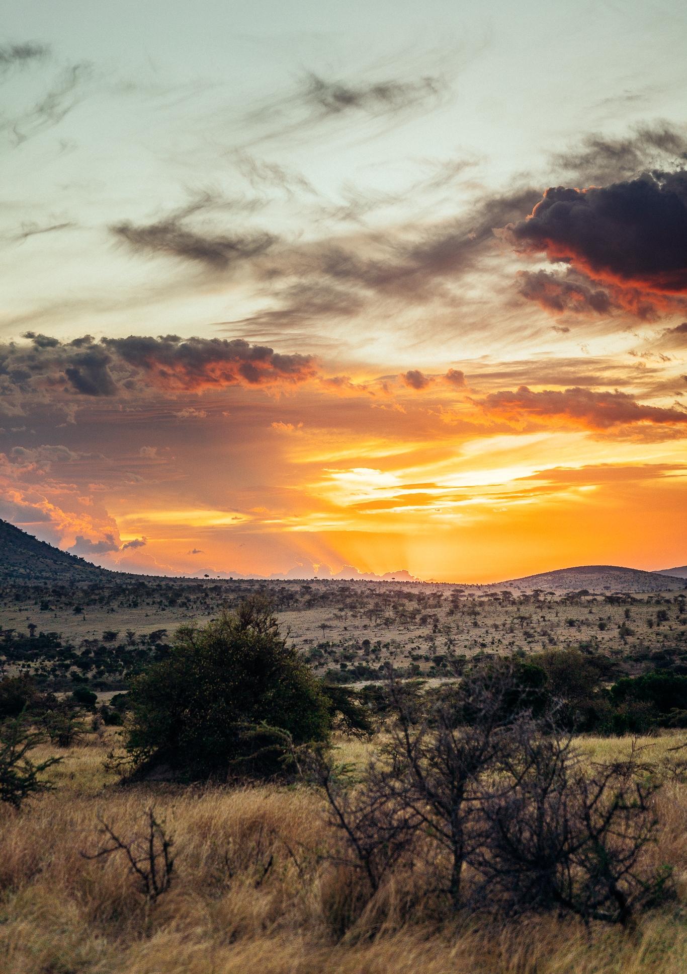 Maasai Mara Sunset Ph. Dave Krugman