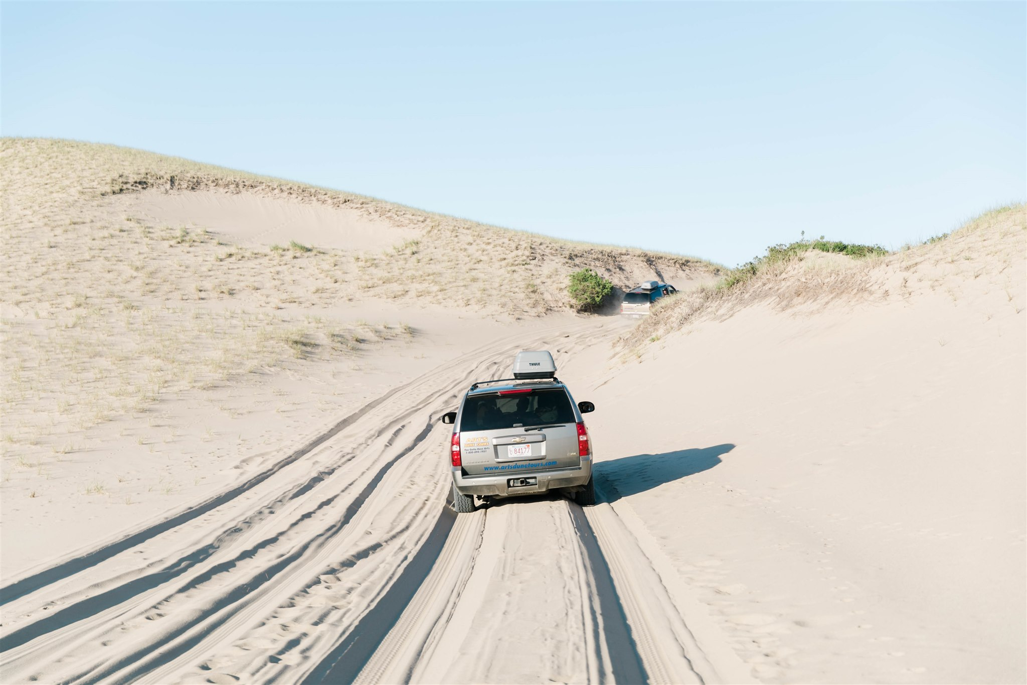 San Dunes - Ptown, Cape Cod with IFAW + Kin Travel