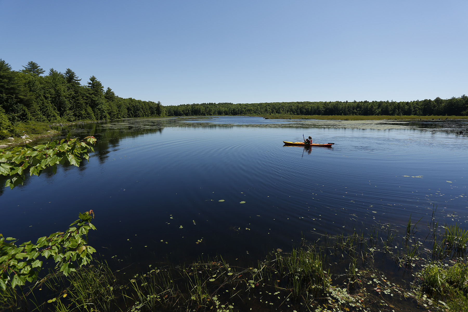 Knights Pond (Kevin Bruise Photography) (164).jpg