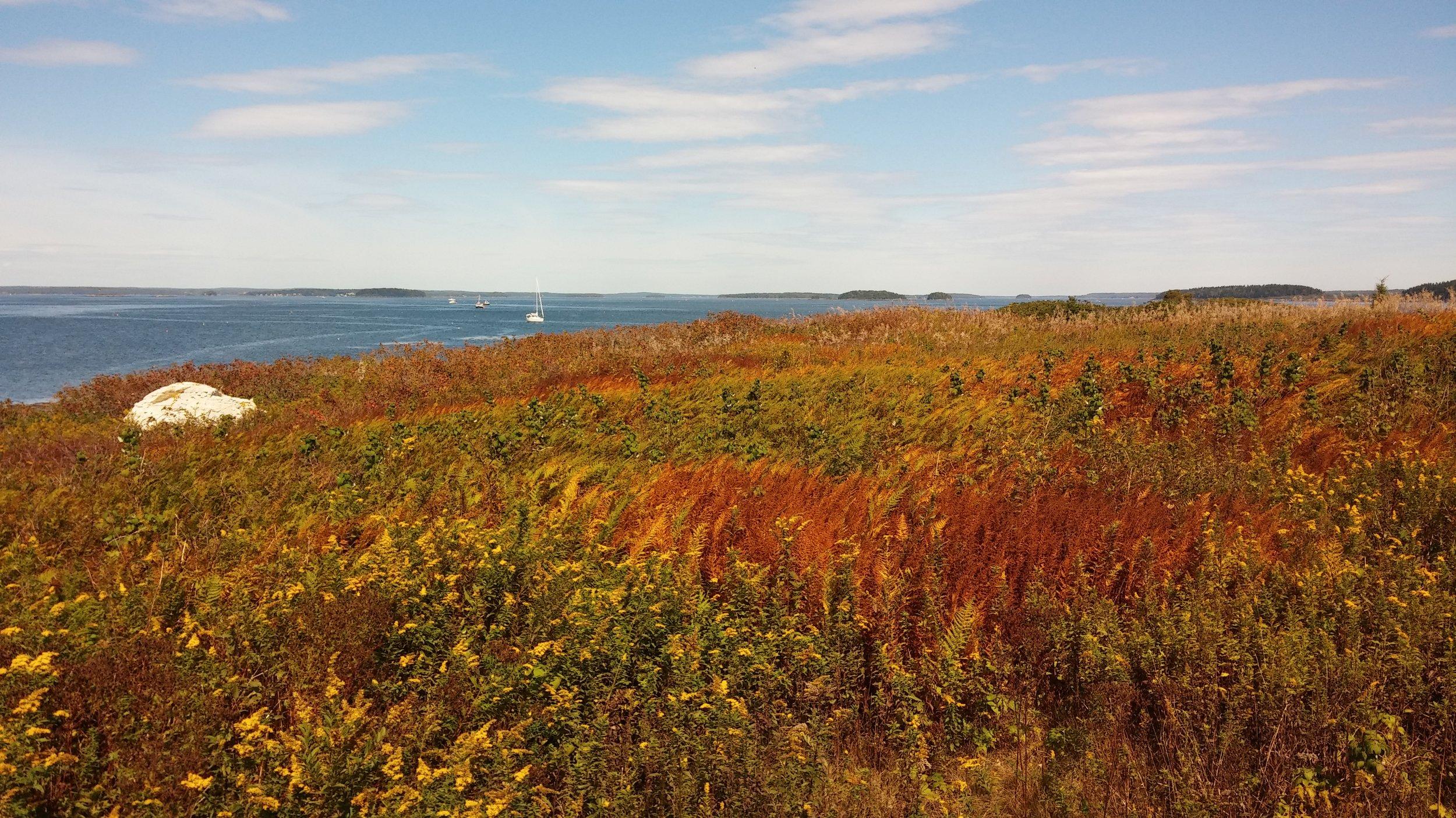 Stockman Island (Caitlin Gerber) 2.jpg