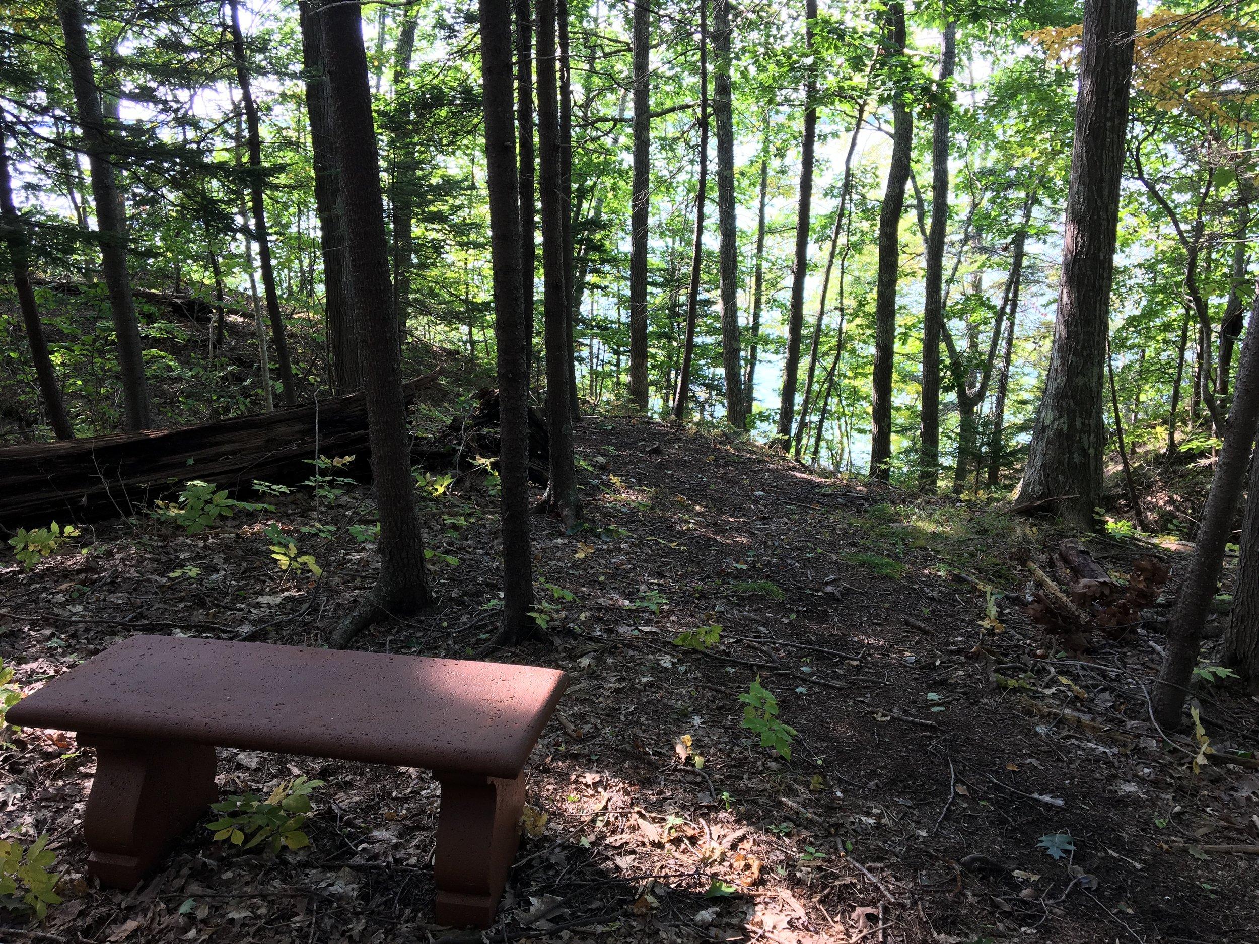 New Curit Bench--Caitlin Gerber.jpeg