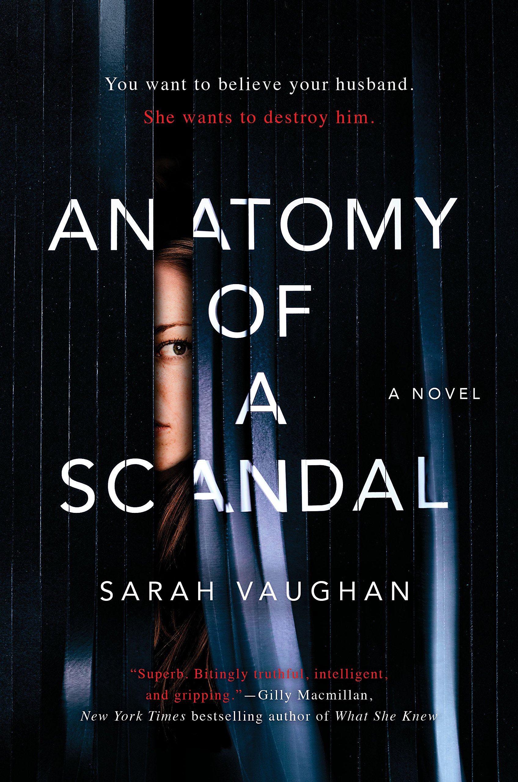 anatomy of a scandal by sarah vaughan.jpg