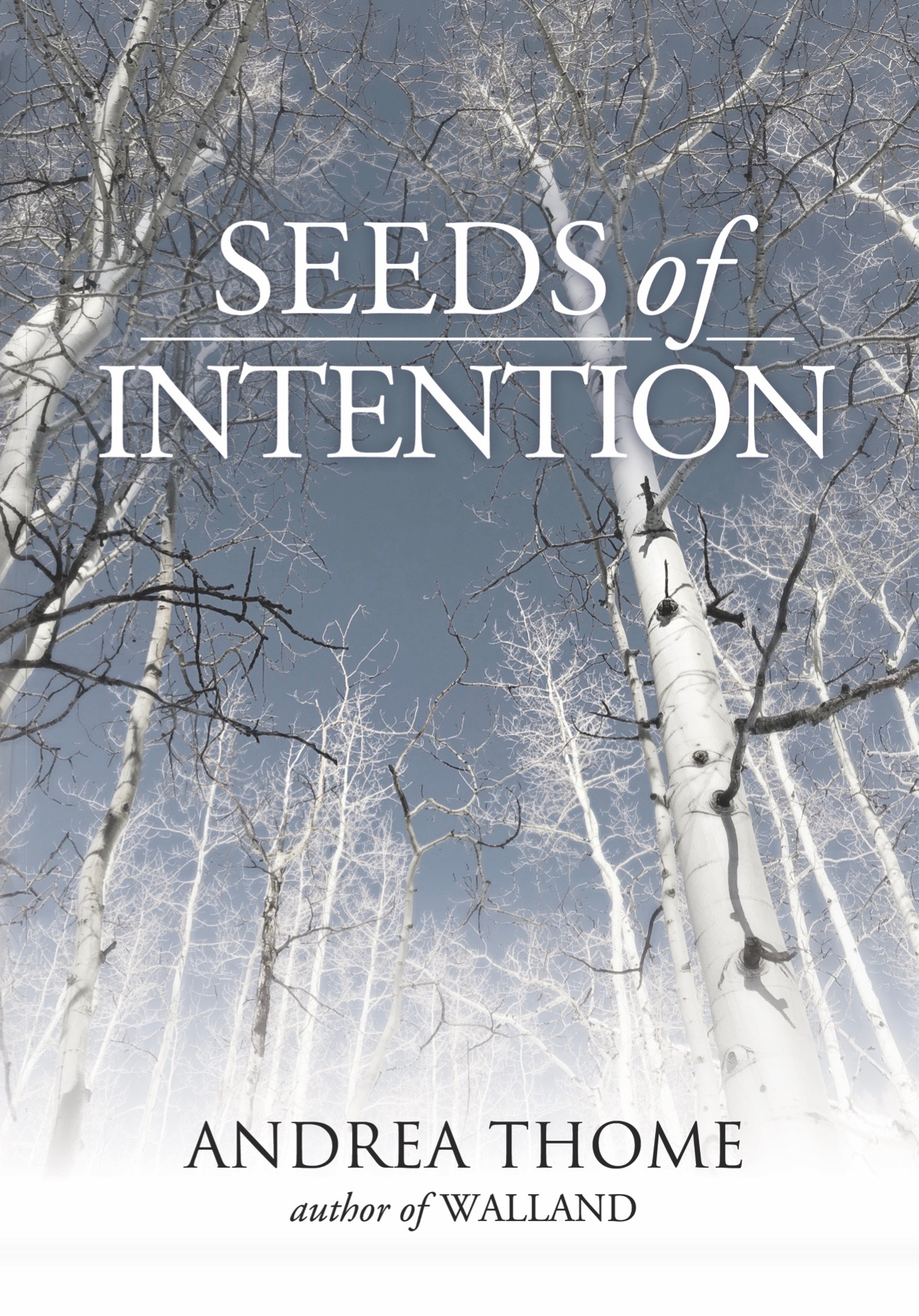 Book Feature - Seeds of Intention by Andrea Thome