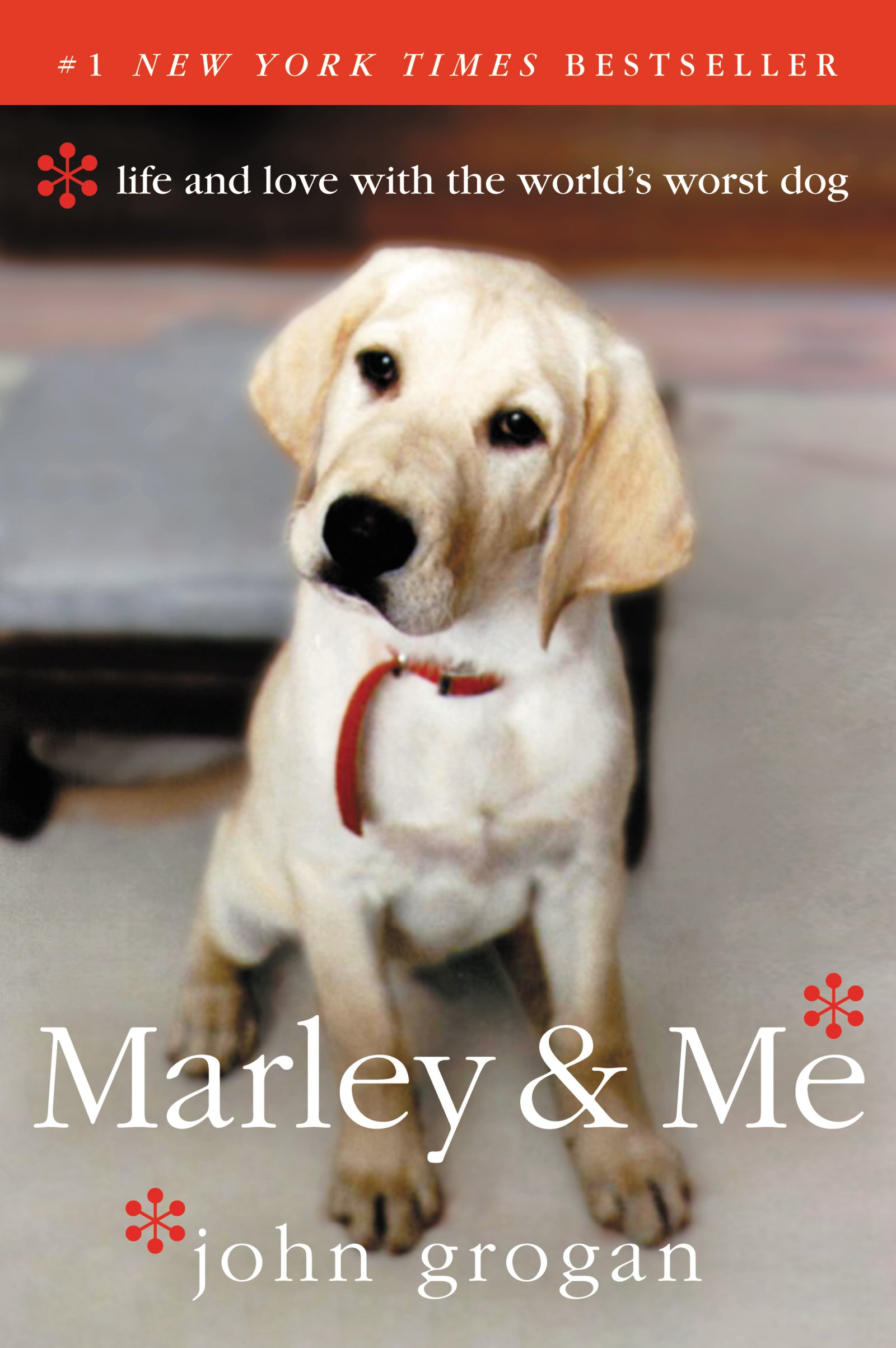 marley and me by john grogan.jpg