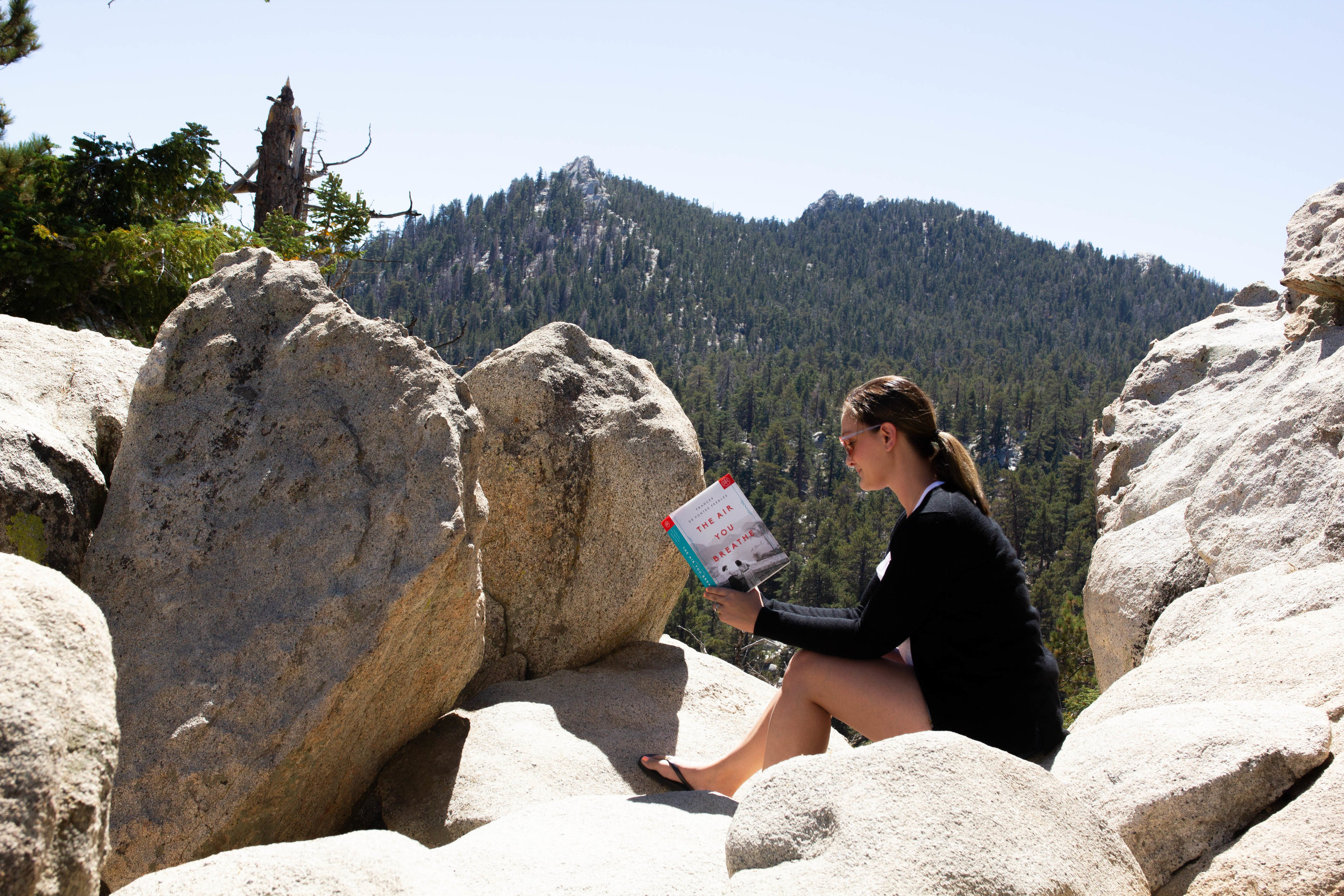 Reading The Air You Breathe by Frances de Pontes Peebles at Mount San Jacinto State Park in Palm Springs, CA