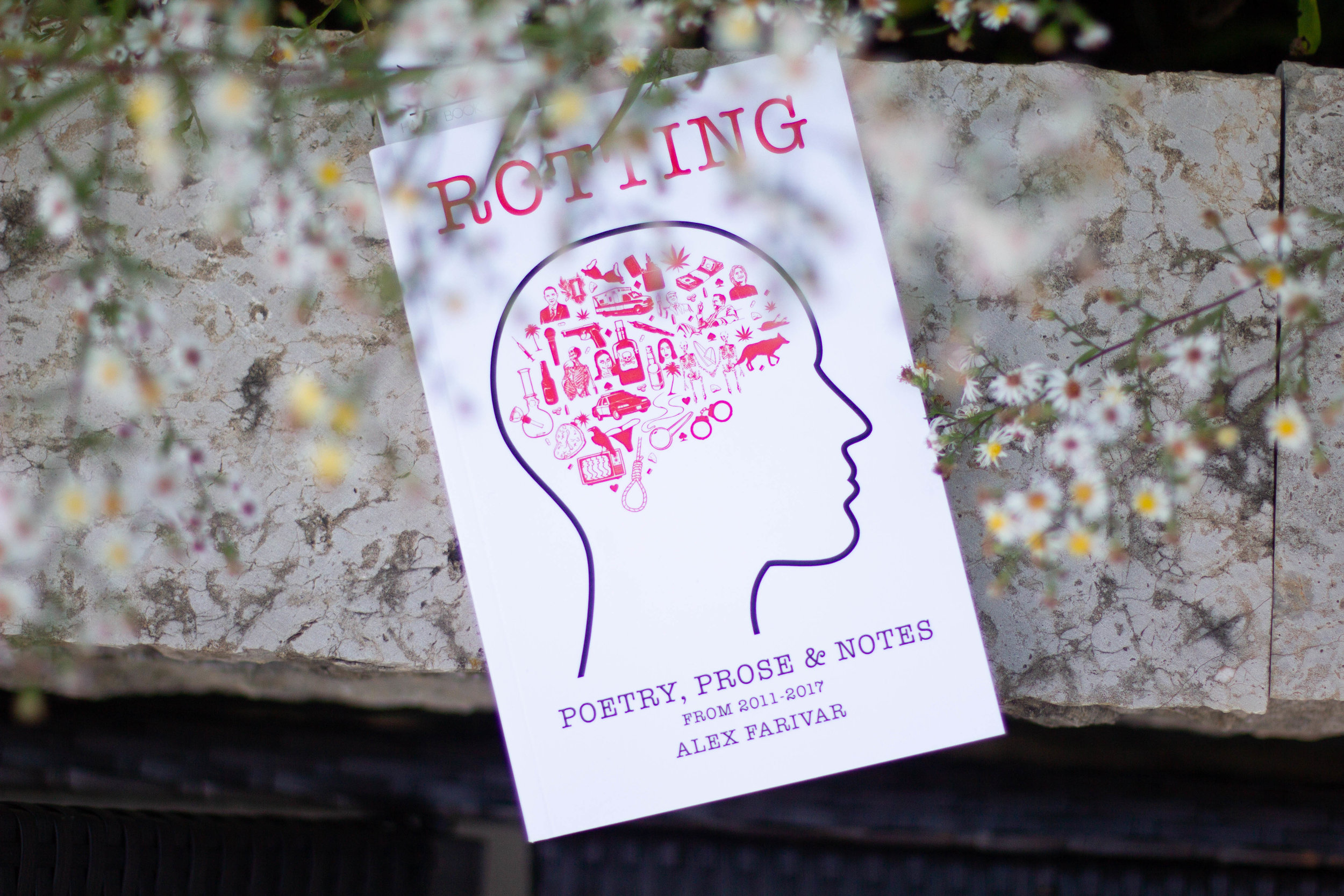 Book Feature - Rotting by Alex Farivar