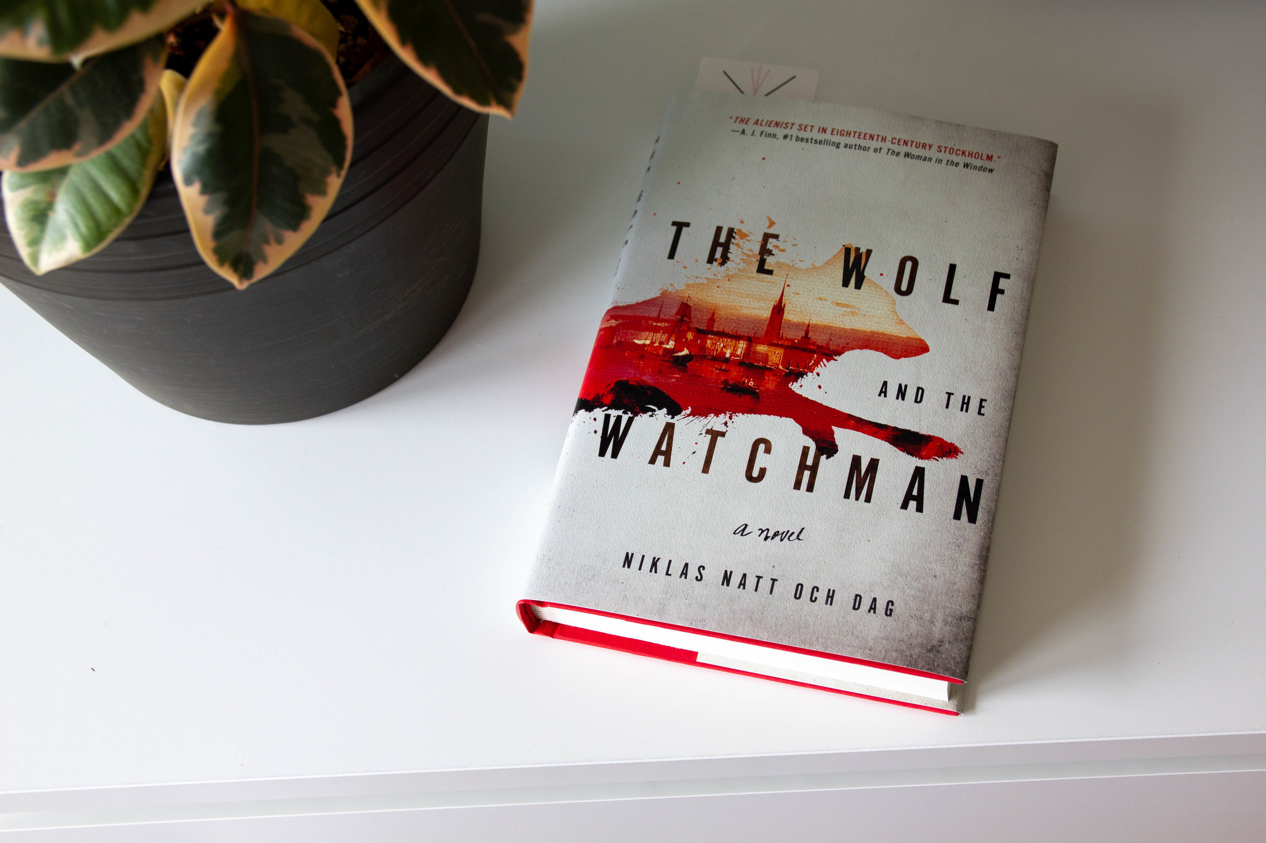 Book Feature - The Wolf and the Watchman by Niklas Natt och Dag
